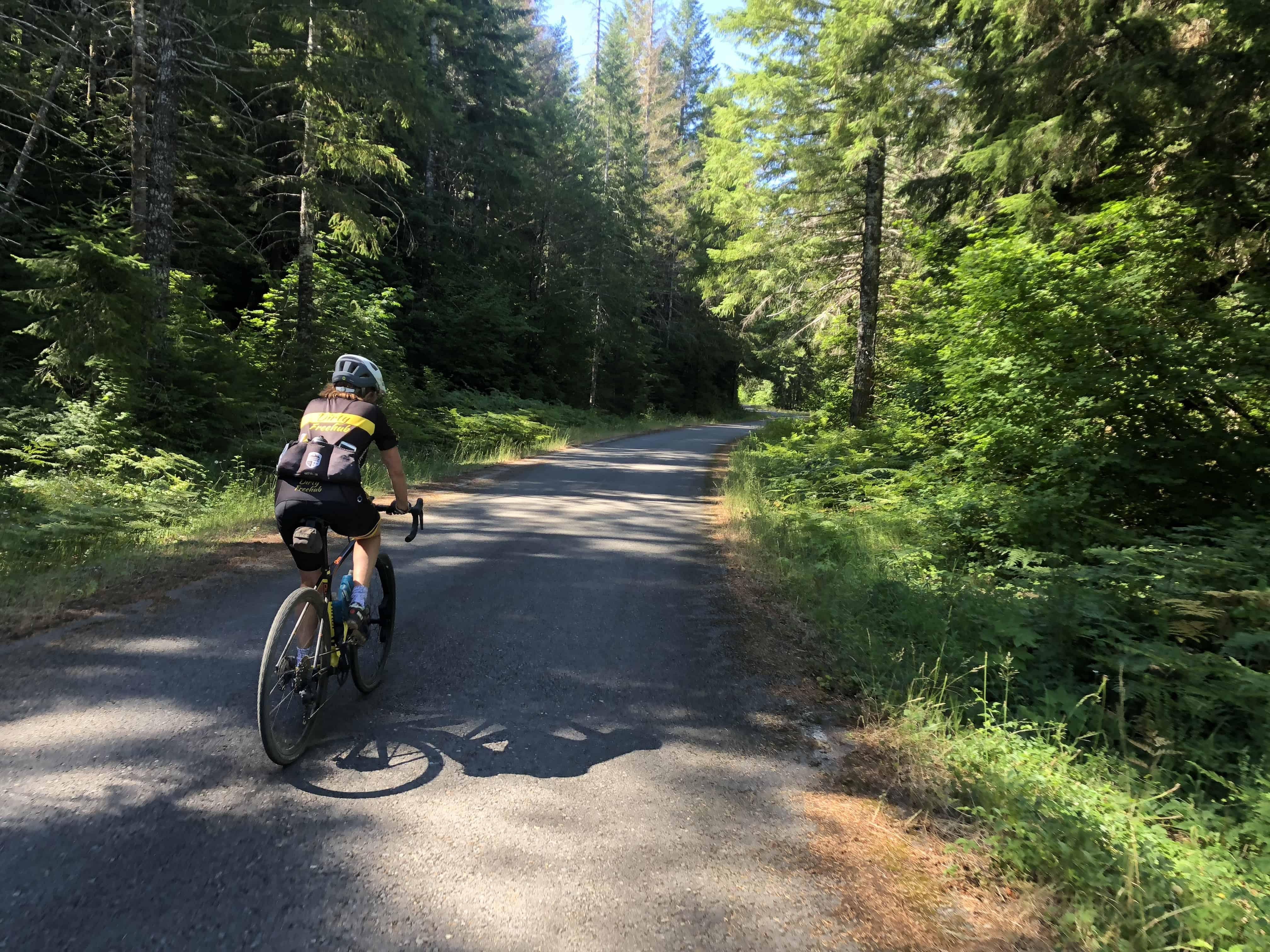 Cyclist on Upper Blowout Road, Willamette National Forest