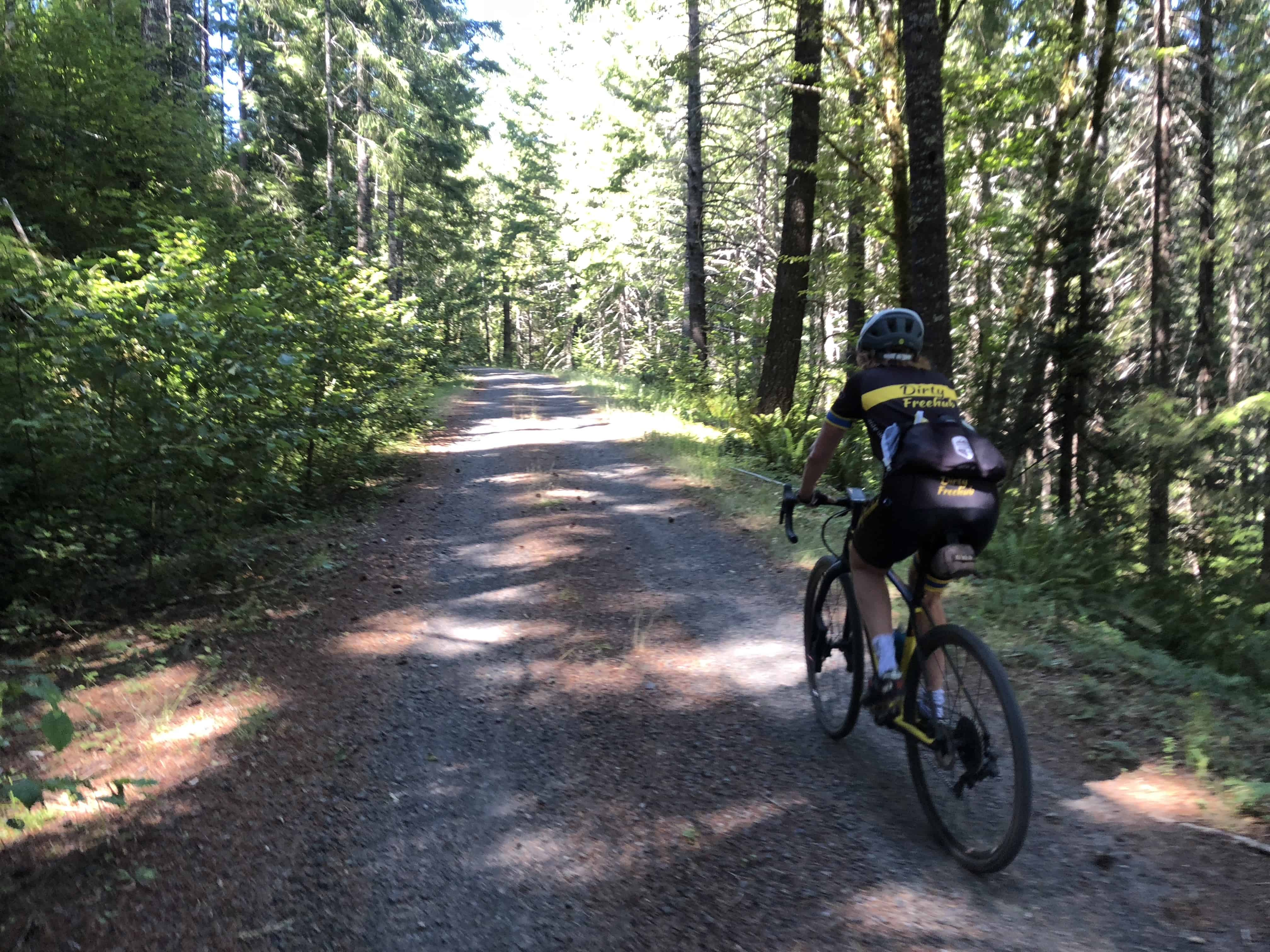 Cyclist climbing Forest Road 1012, Willamette National Forest