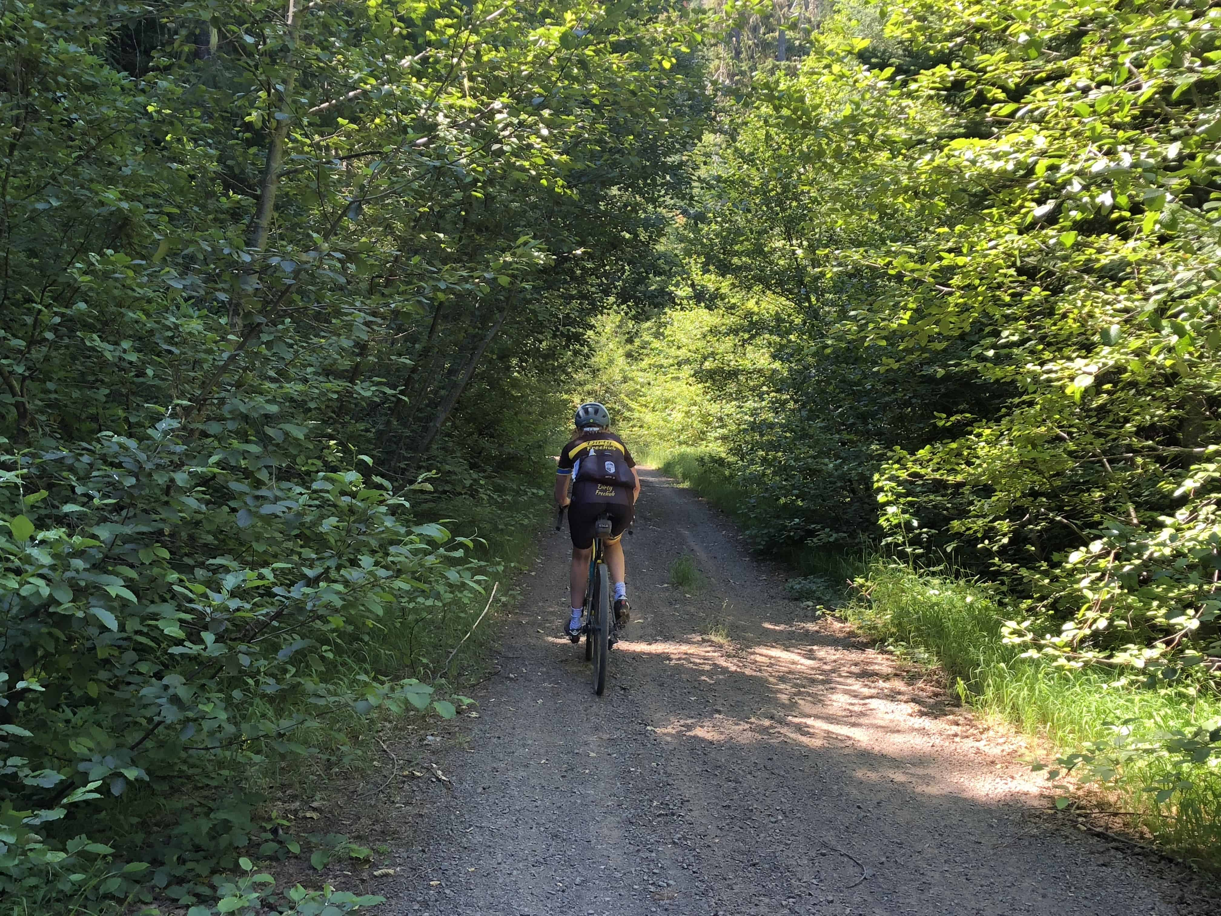 Gravel cyclist in Willamette National Forest
