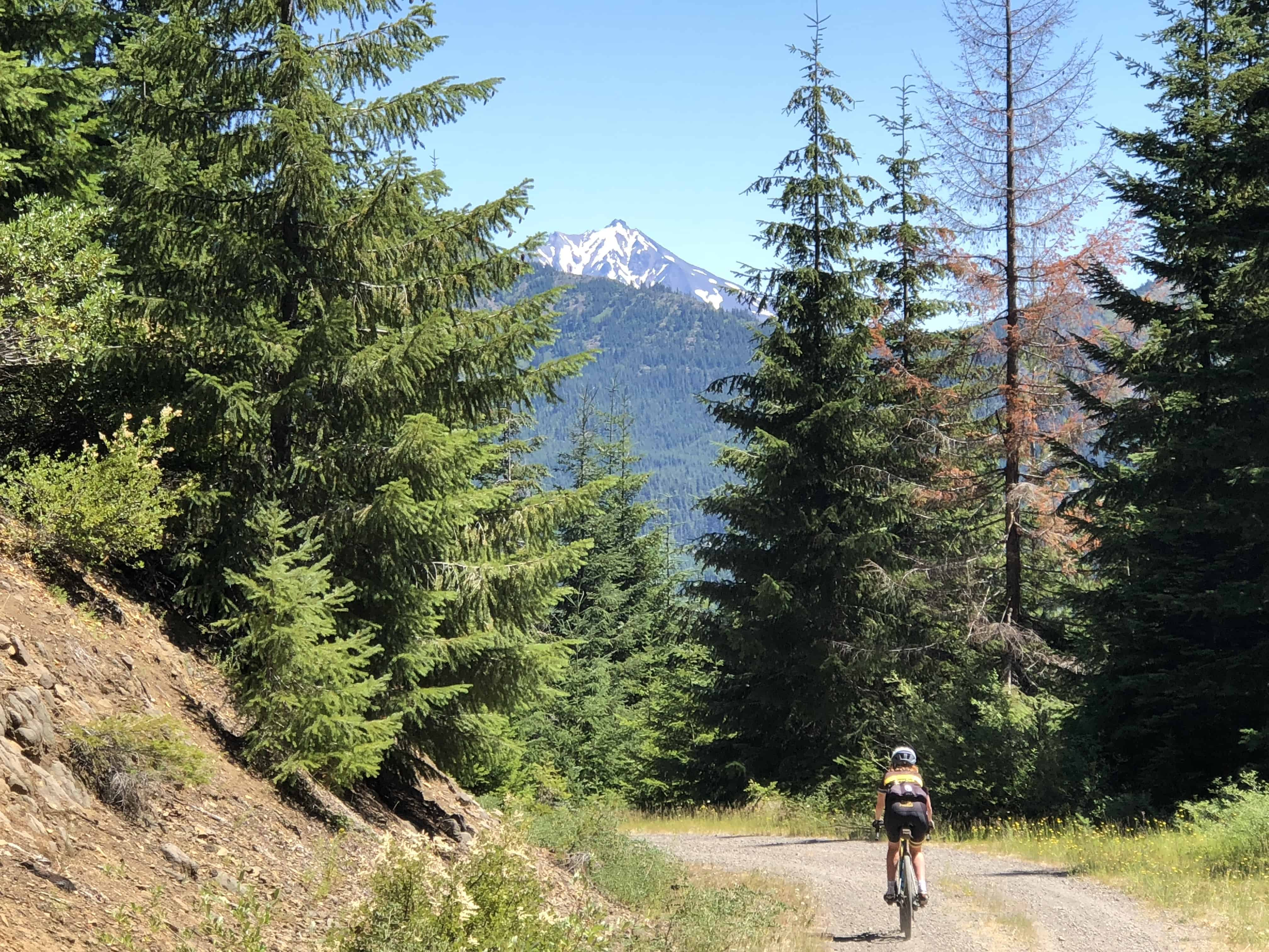 Cyclist descending gravel Forest Road 1014 of Willamette National Forest