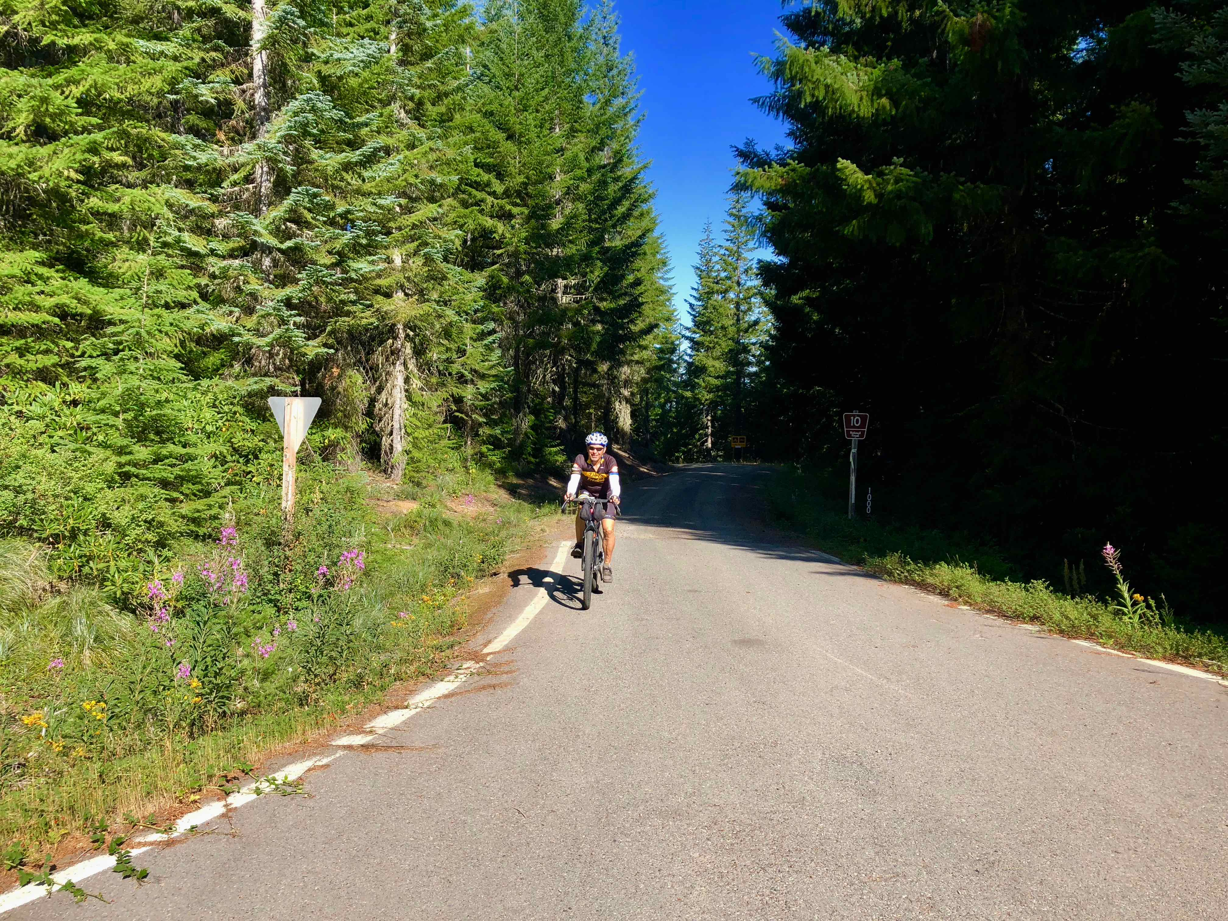 Cyclist riding Straight Creek Road, Willamette National Forest