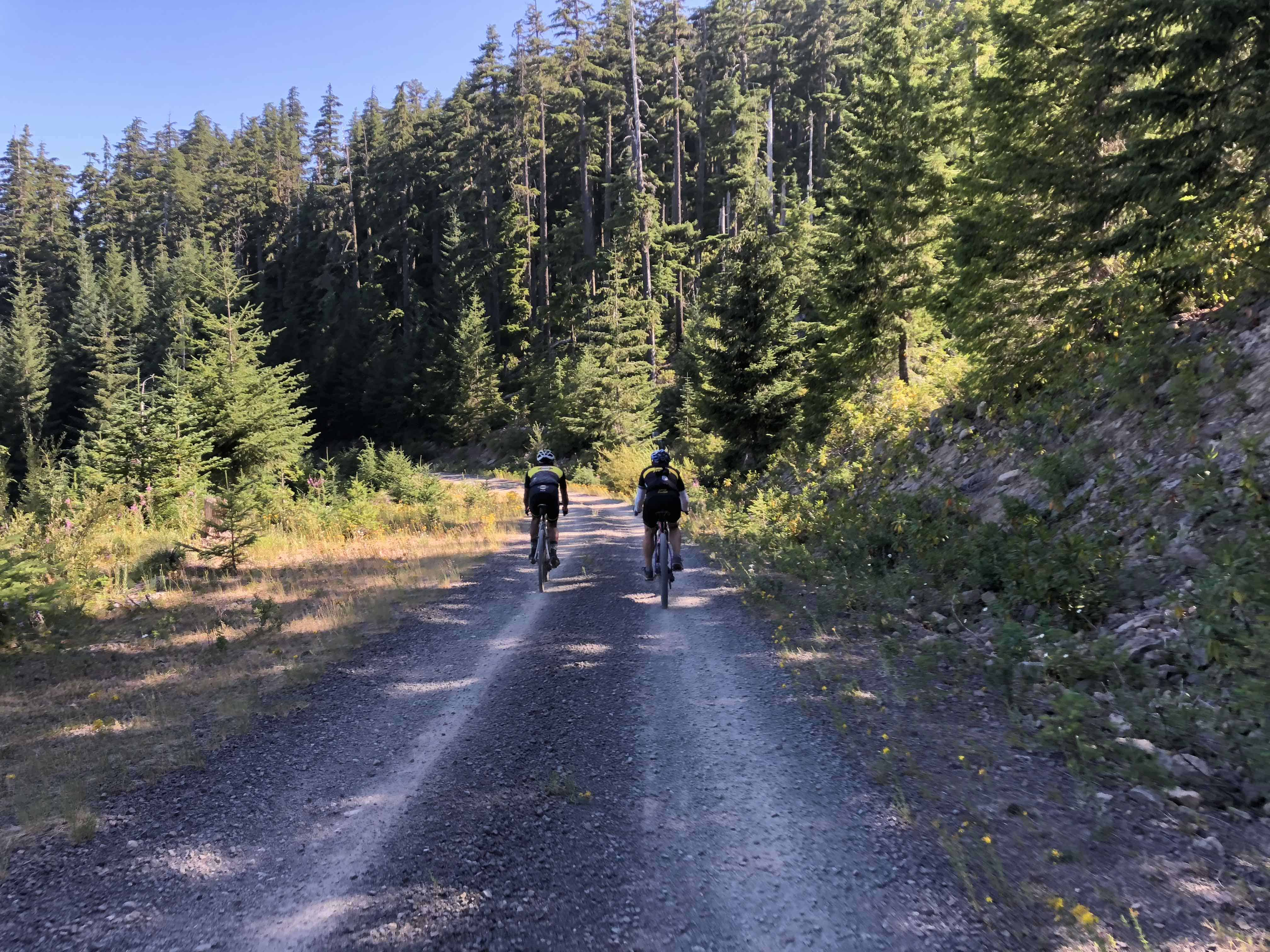 Two Cyclists on gravel Forest Road 1133, Willamette National Forest