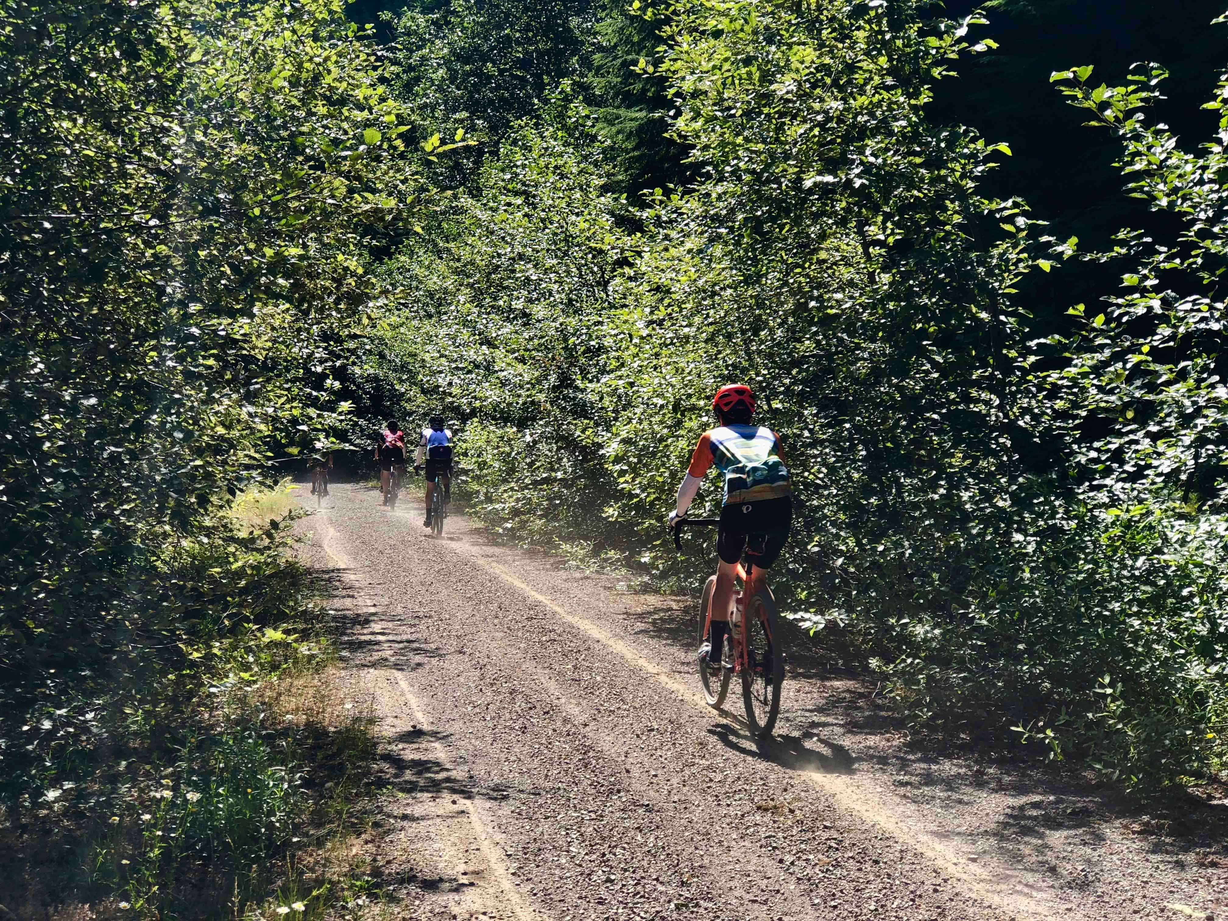 Two cyclists descending Forest Road 1012, Willamette National Forest