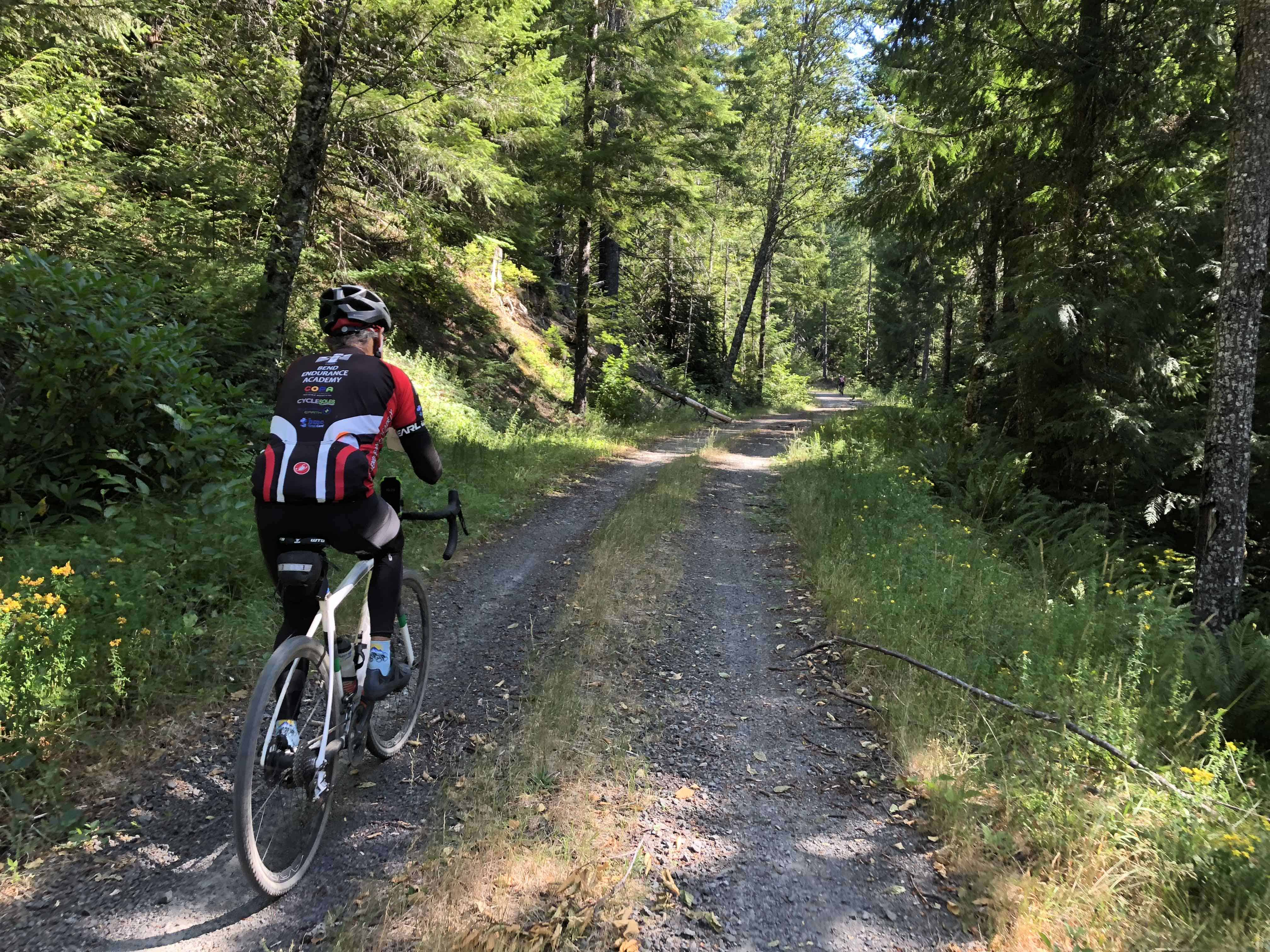 Gravel griding on Forest Road 1012, Willamette National Forest