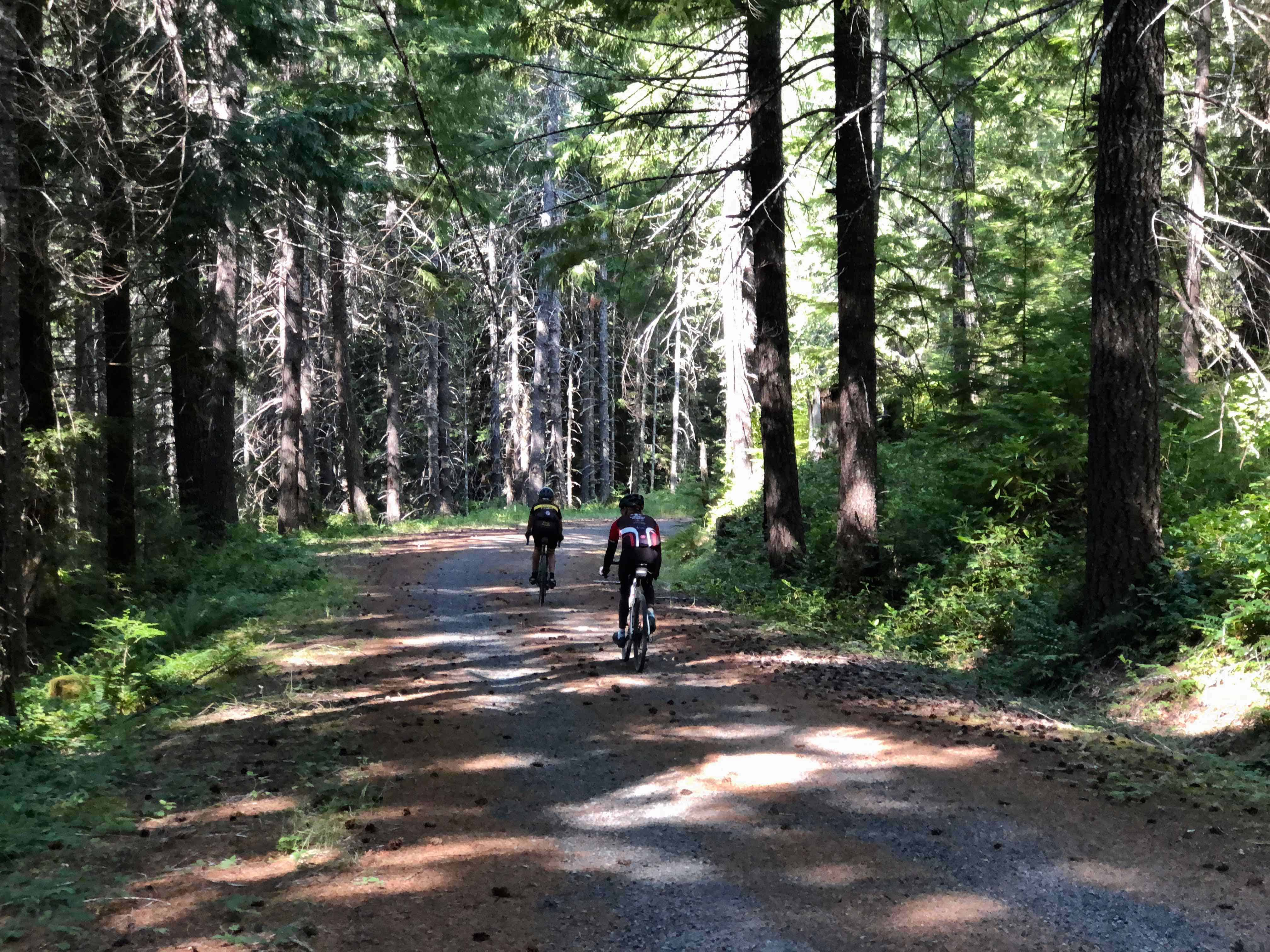 Two riders on Forest Road 1012, Willamette National Forest