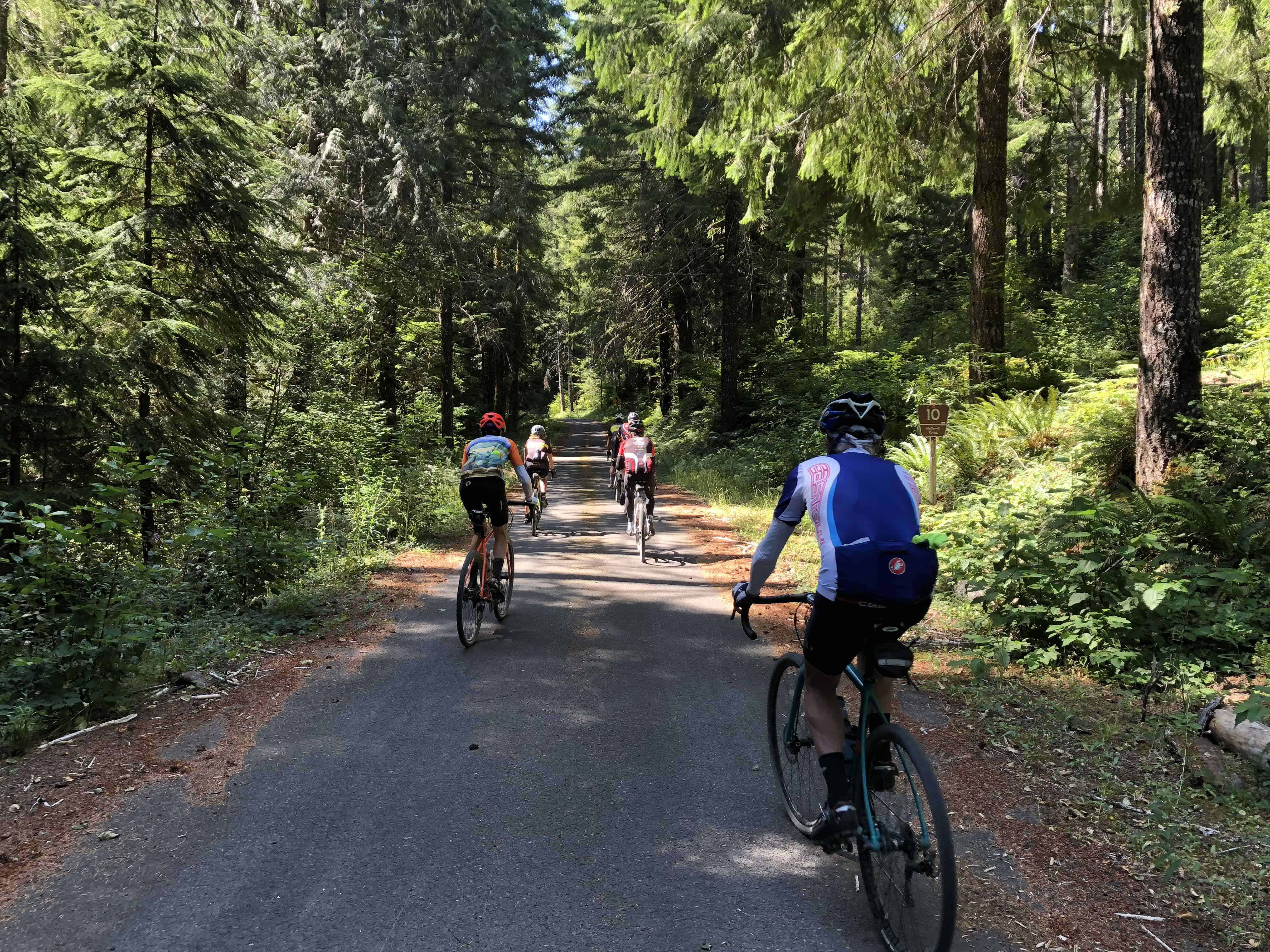 Two riders on Upper Blowout Road, Willamette National Forest