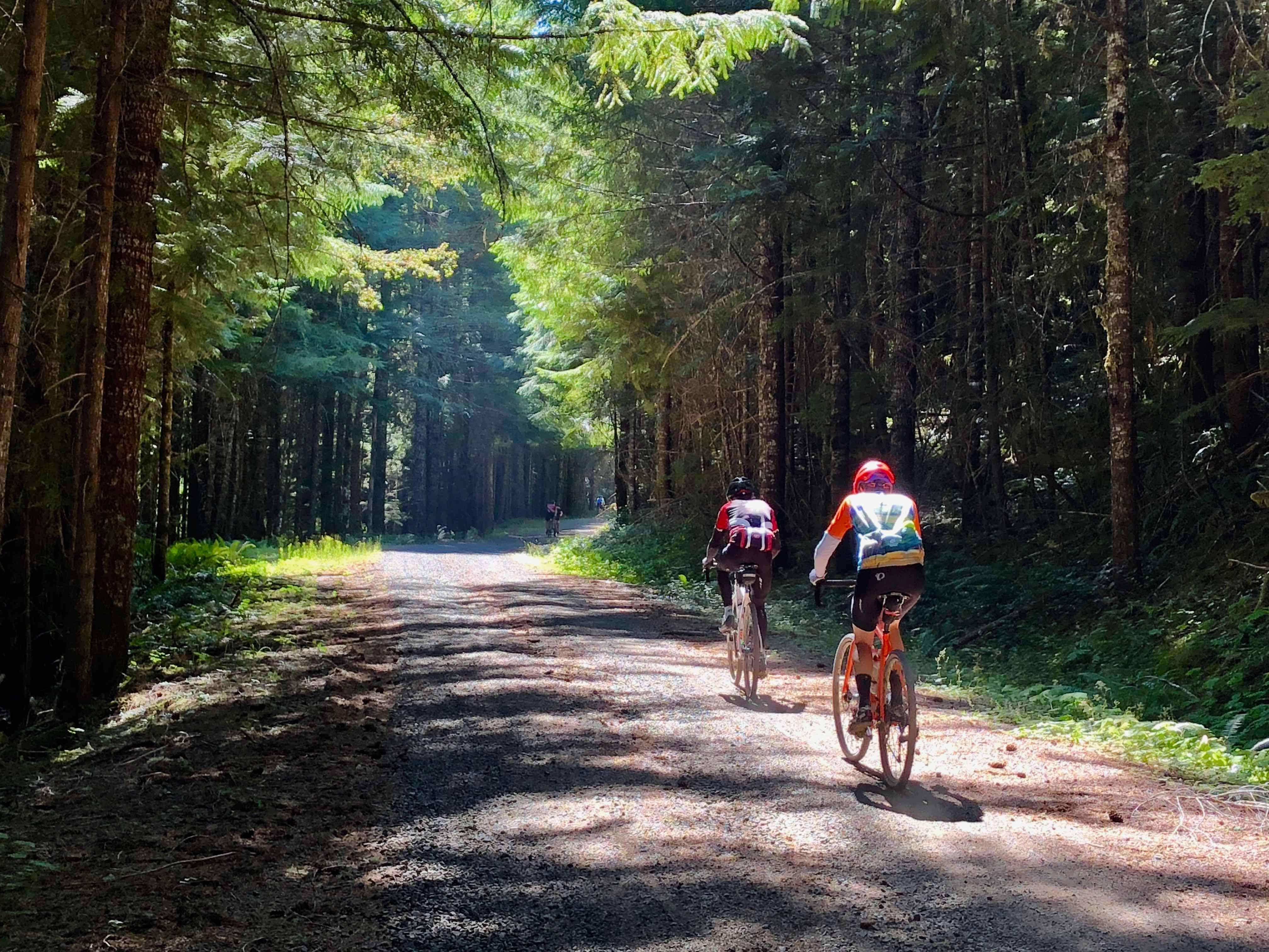 Two cyclists climbing gravel on Forest Road 10, Willamette National Forest