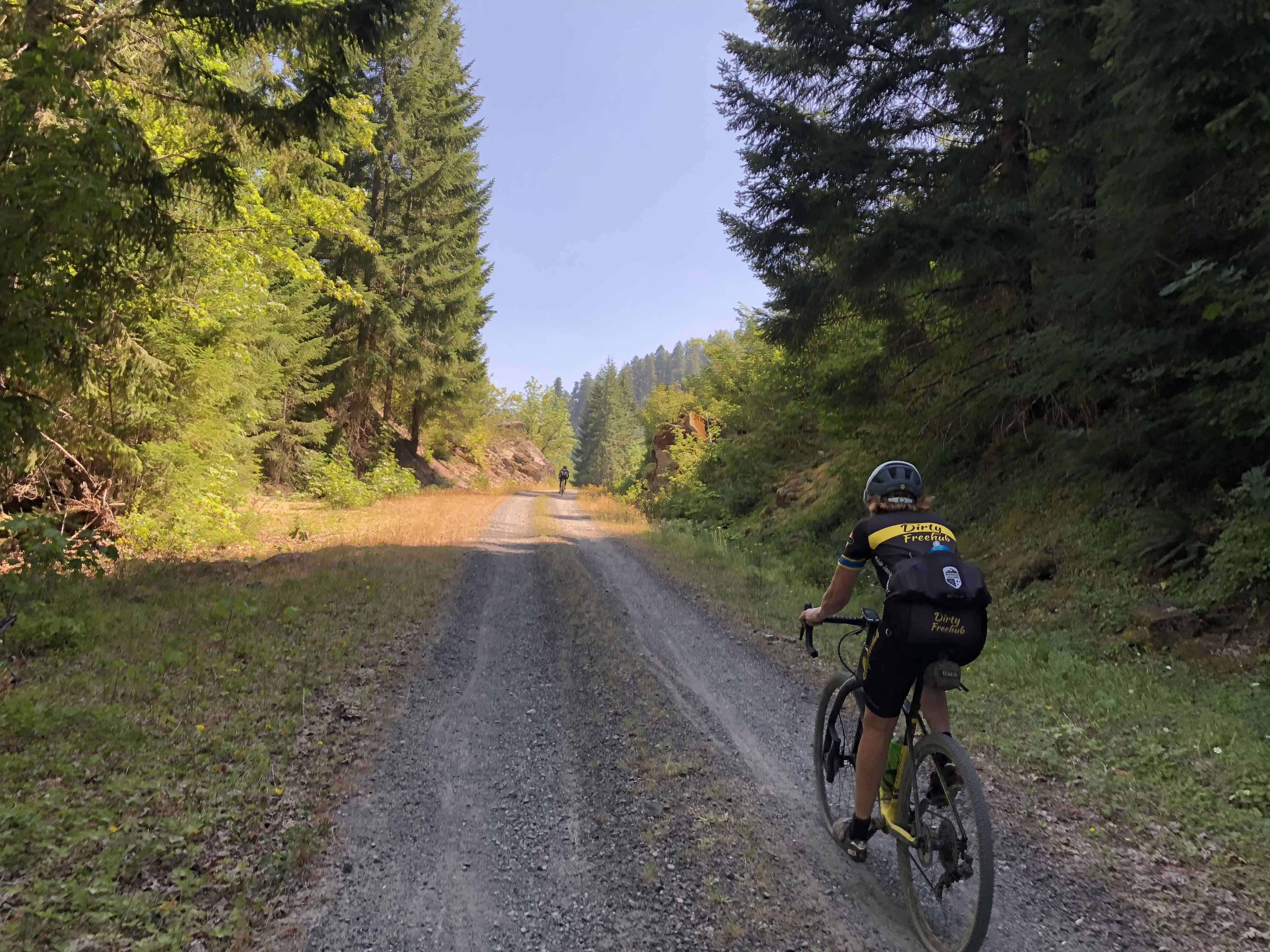 Cyclist climbing on Forest Road 10, Willamette National Forest