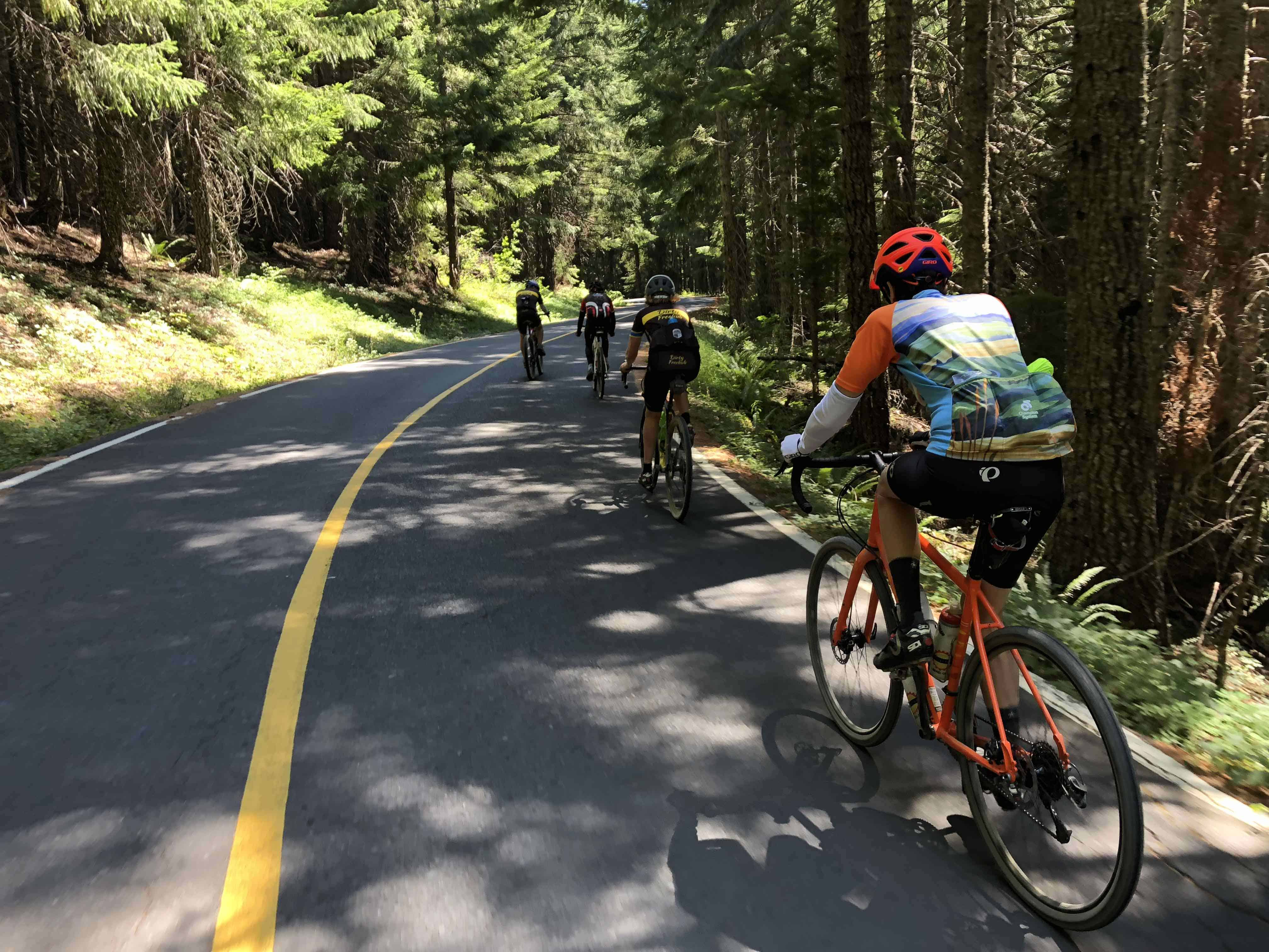 Group of cyclist on Straight Creek Road, Willamette National Forest