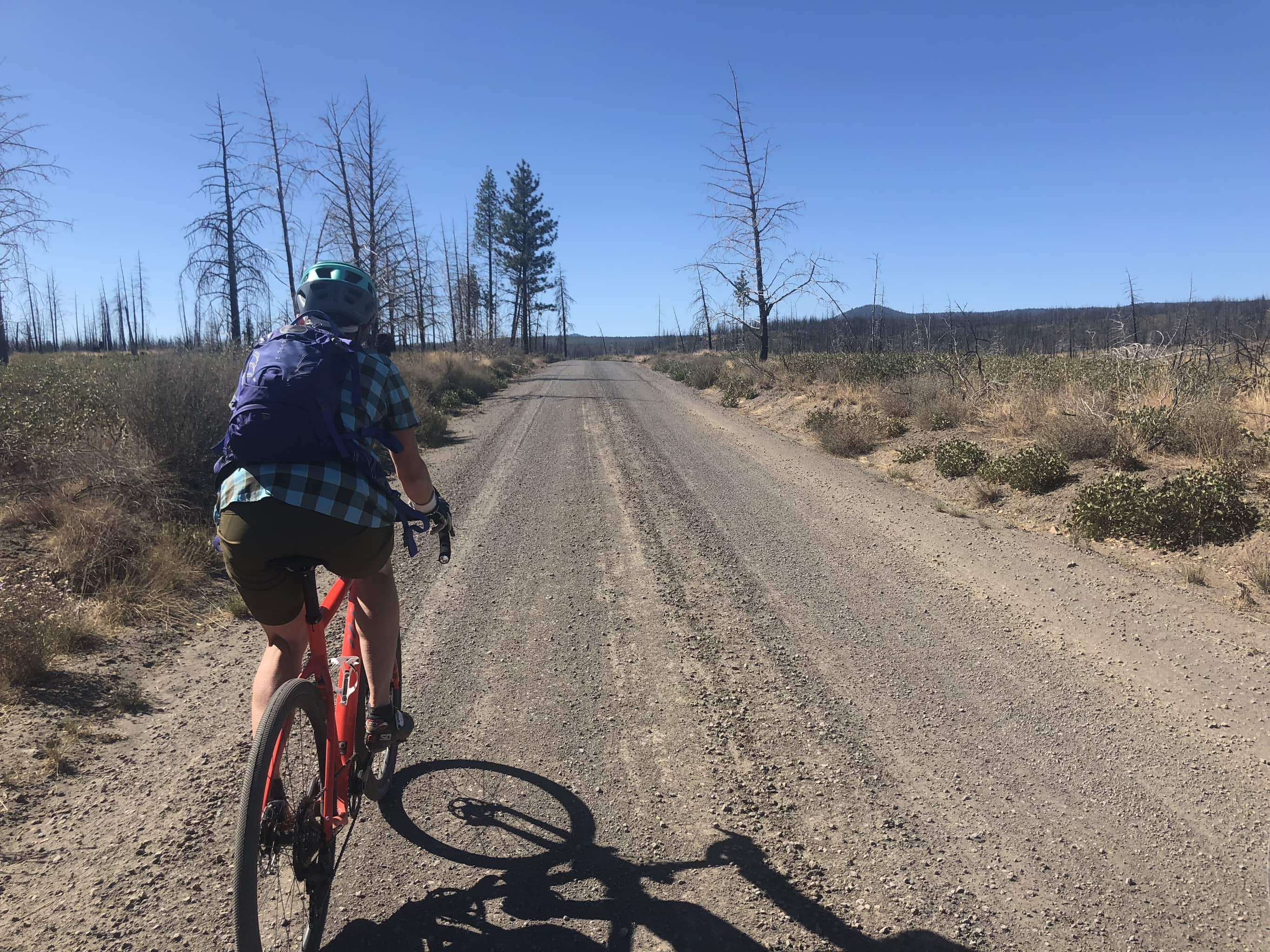 Woman cyclist riding gravel road through the Two Bulls fire area near Bend, OR.
