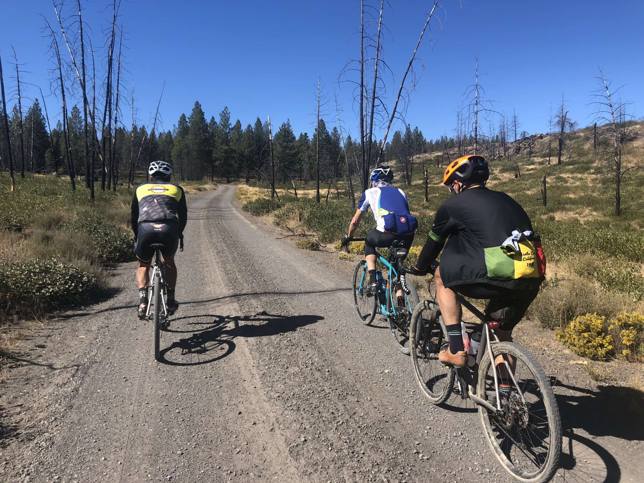Group of cyclist on gravel road approaching Skyline Forest.