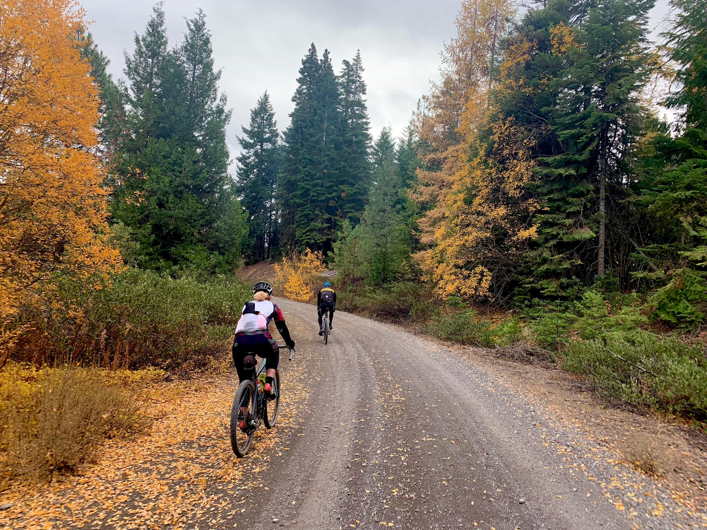 Two gravel bike riders on good hard pack gravel with trees in fall colors.