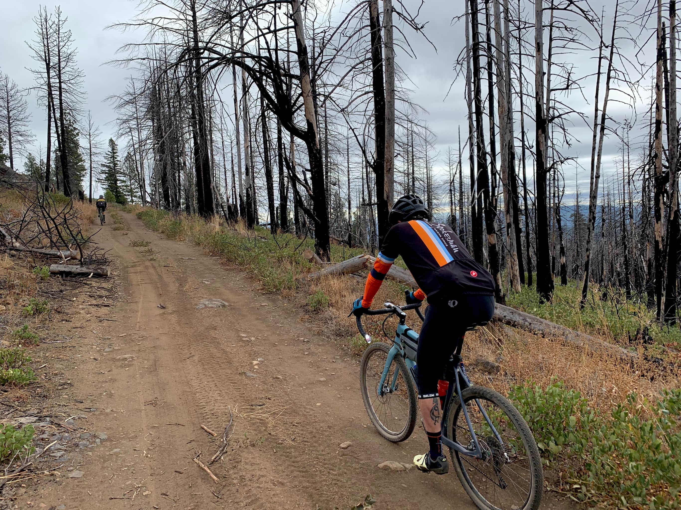 Gravel bike rider on primitive forest service road with burned trees and views to east.