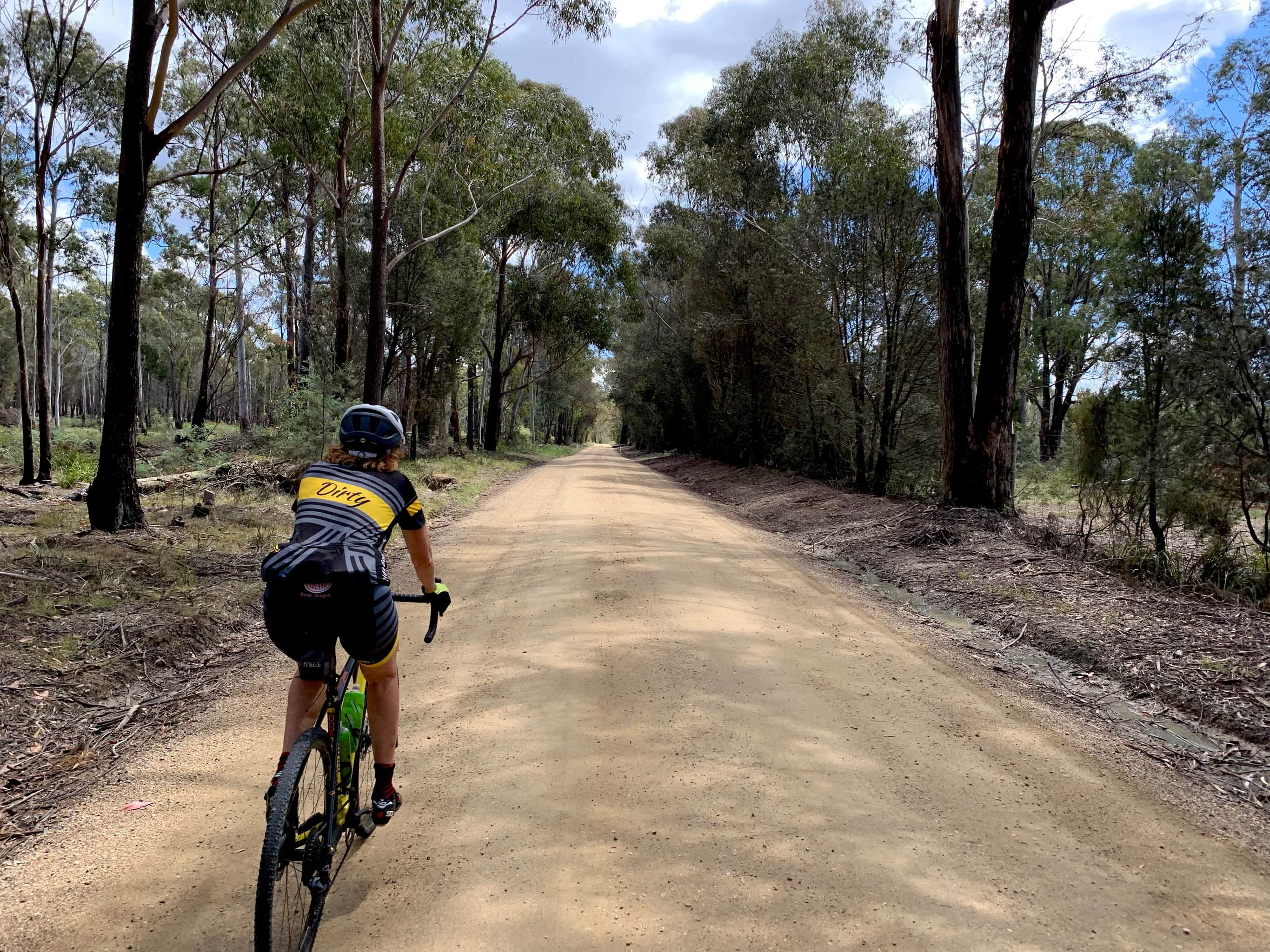 Bike rider on gravel road with tall trees to both sides of road.
