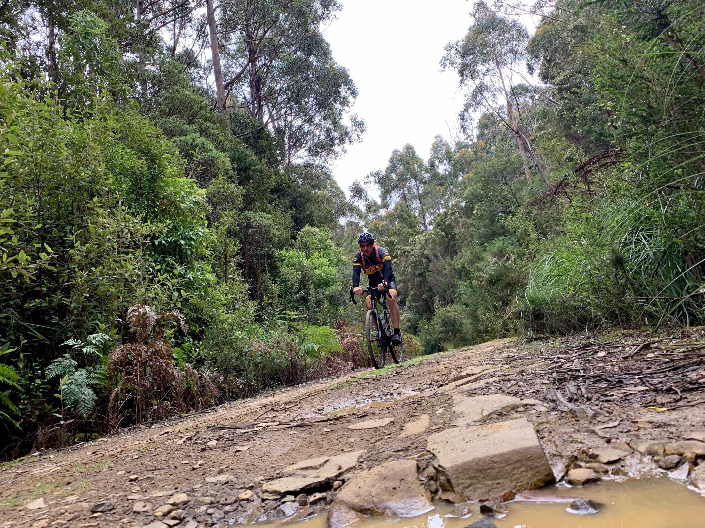 Bike rider on Staffords gravel road with puddles and larger, chunky rocks.