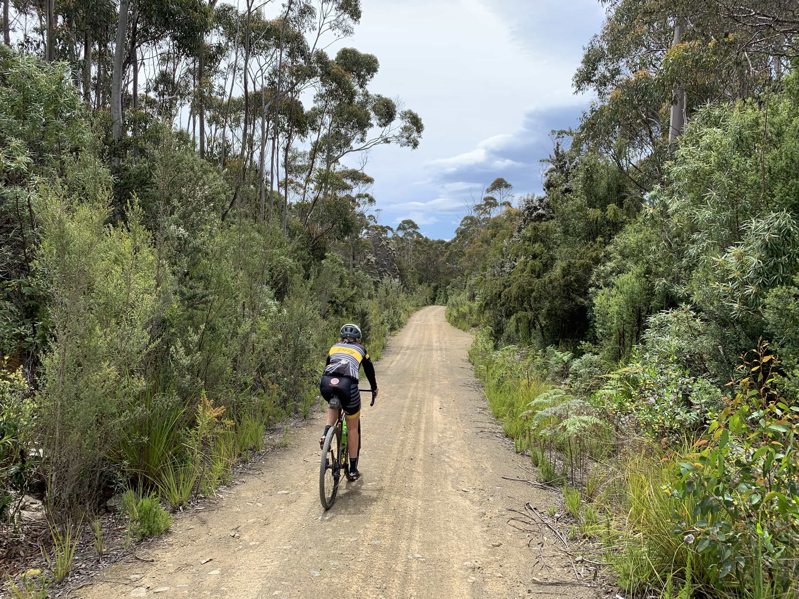 Bike rider on gravel road that descends to Adventure Bay on South Bruny Island.