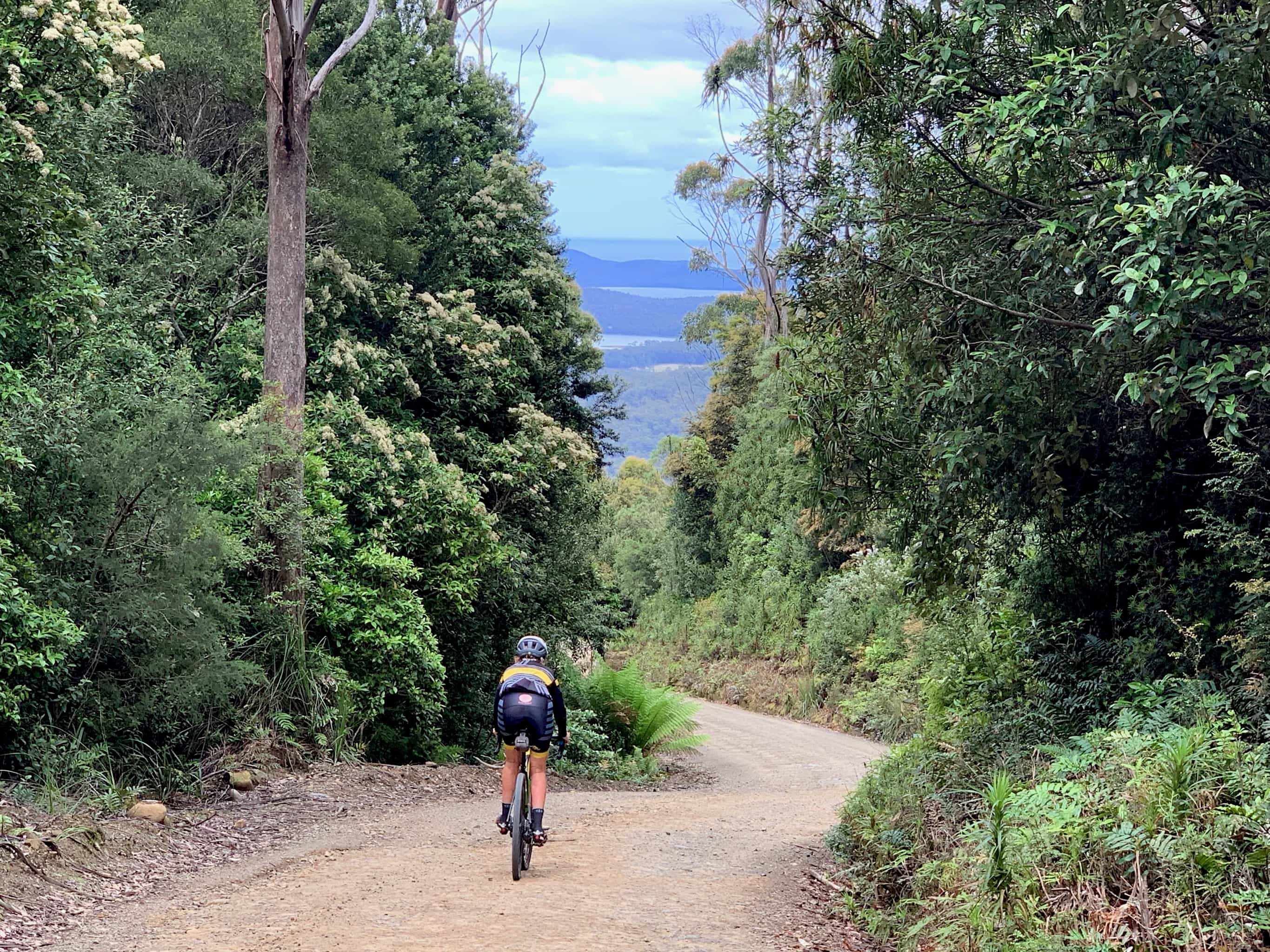 Bike rider descending gravel road from Mangana summit on South Bruny Island.