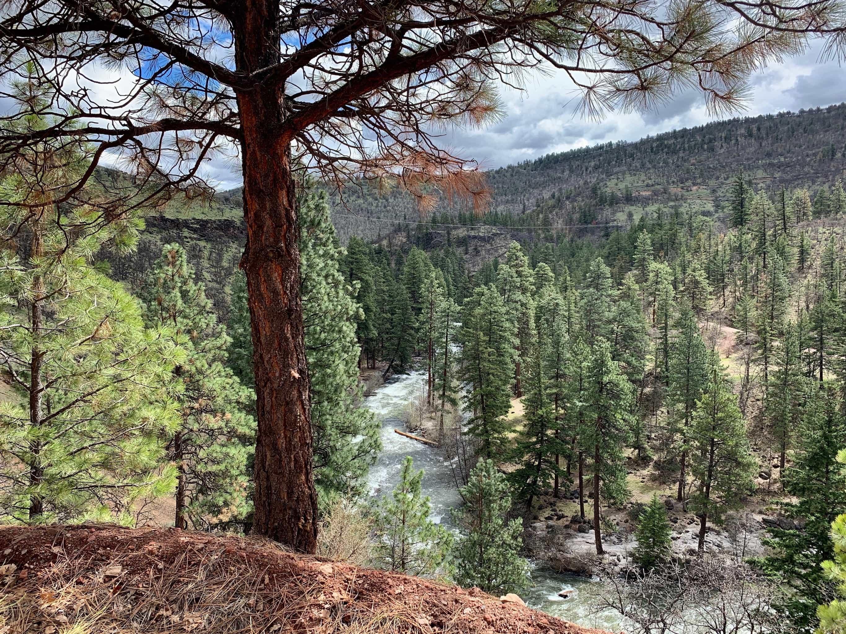 Cyclist on open gravel road near Wamic, Oregon.