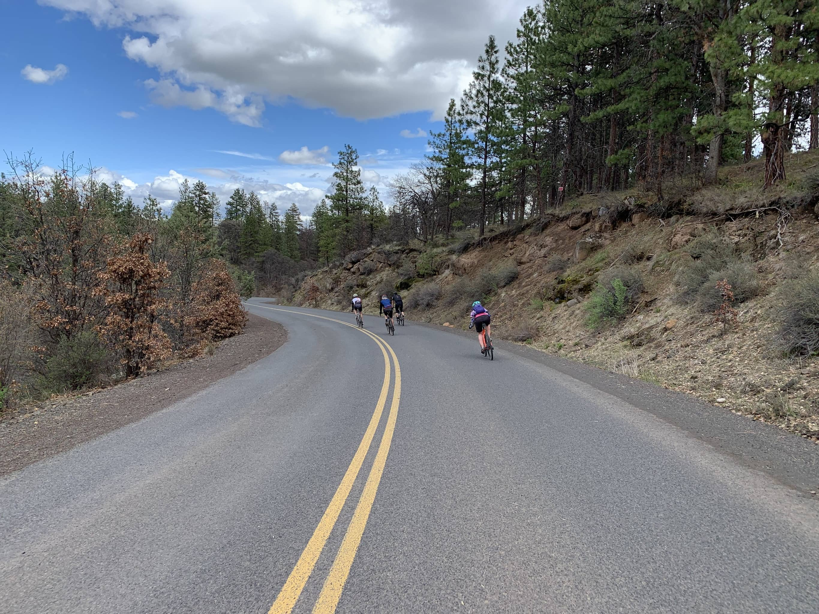 Cyclists on paved descent into Wamic, Oregon.