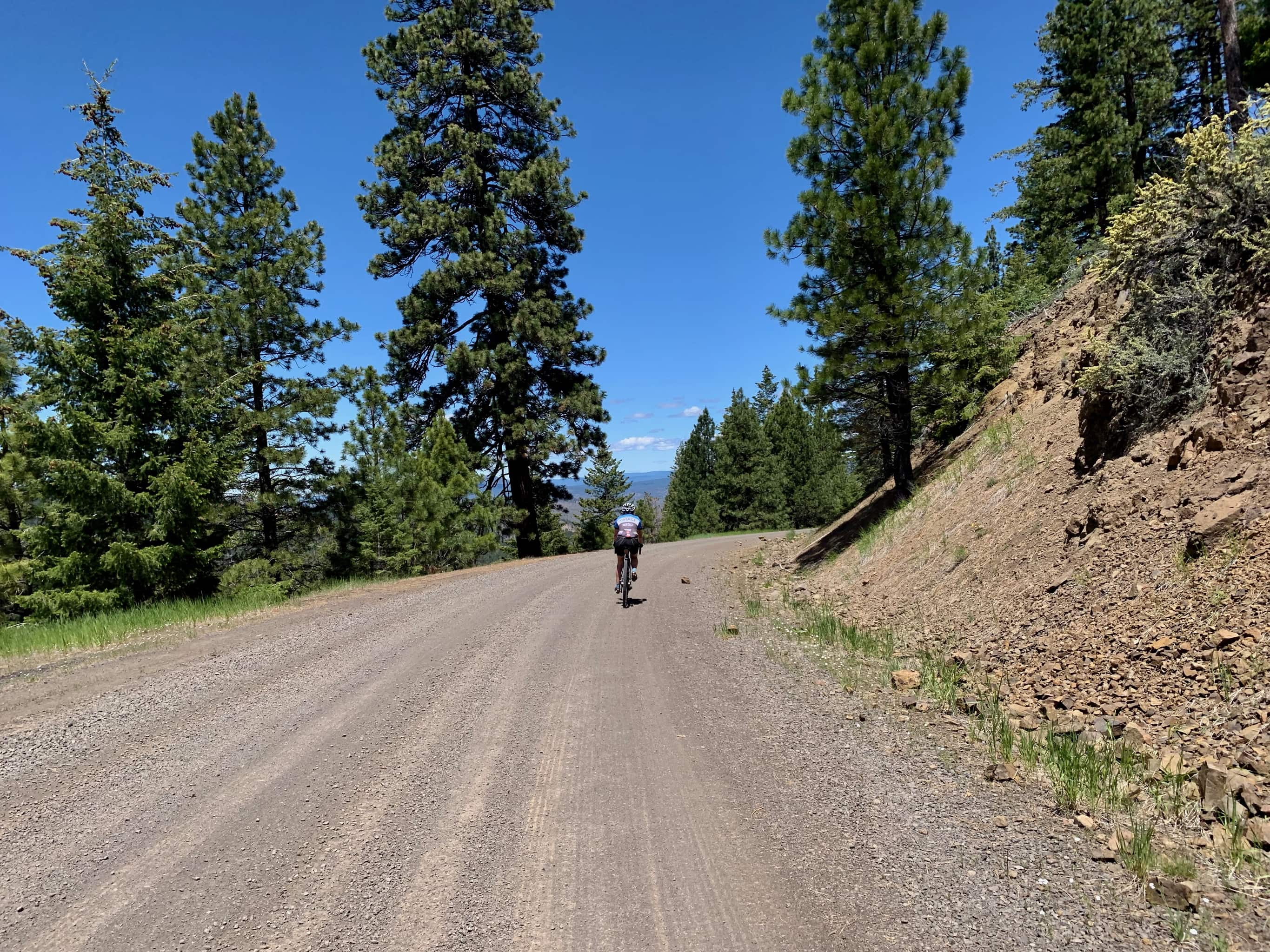 Gravel cyclist descending gravel road / forest service road NF-16  to Post, Oregon.