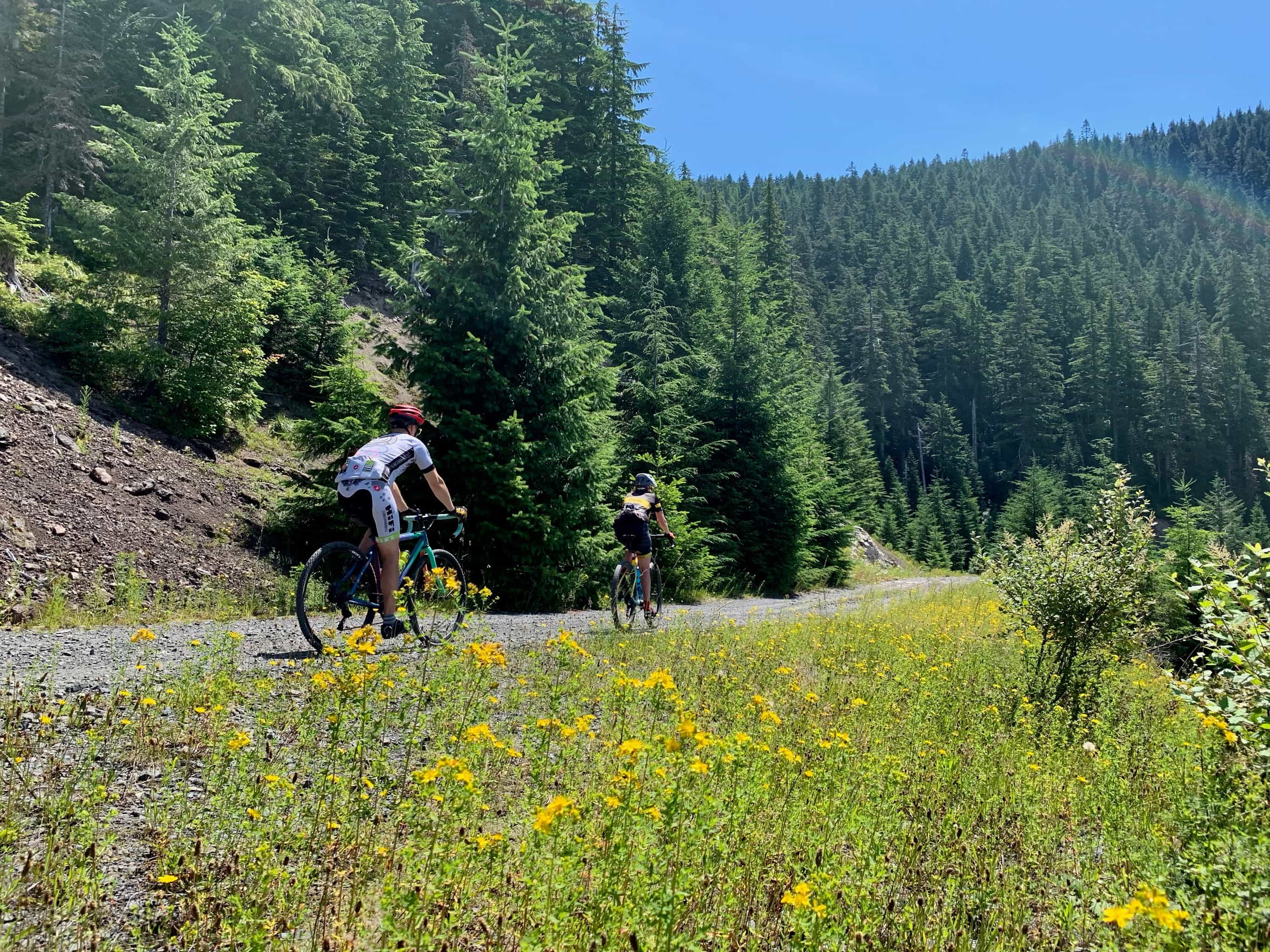 Cyclist on gravel road with flowers in bloom near Trapper Creek Wilderness.