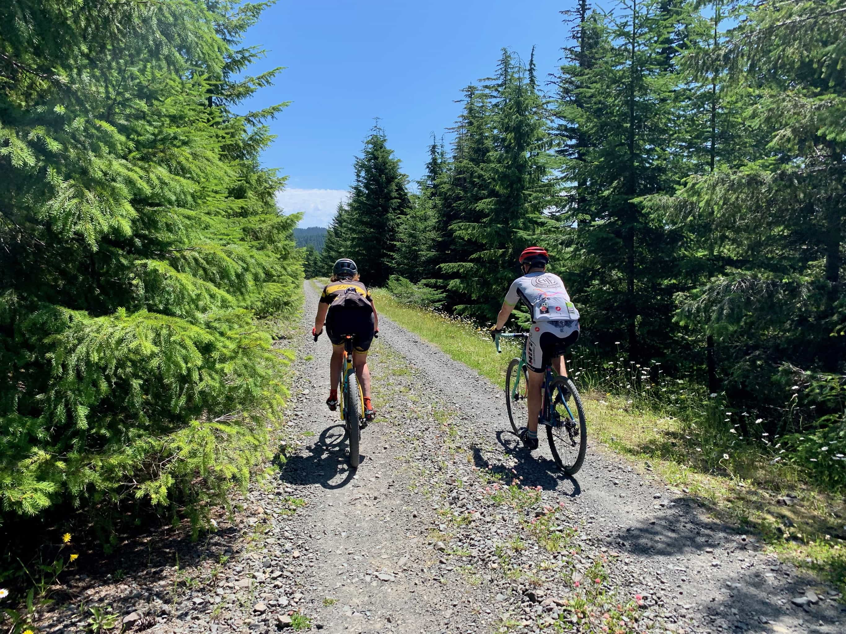 Gravel cyclists on climb of NF-311 near Bare Mountain in Gifford Pinchot National Forest.