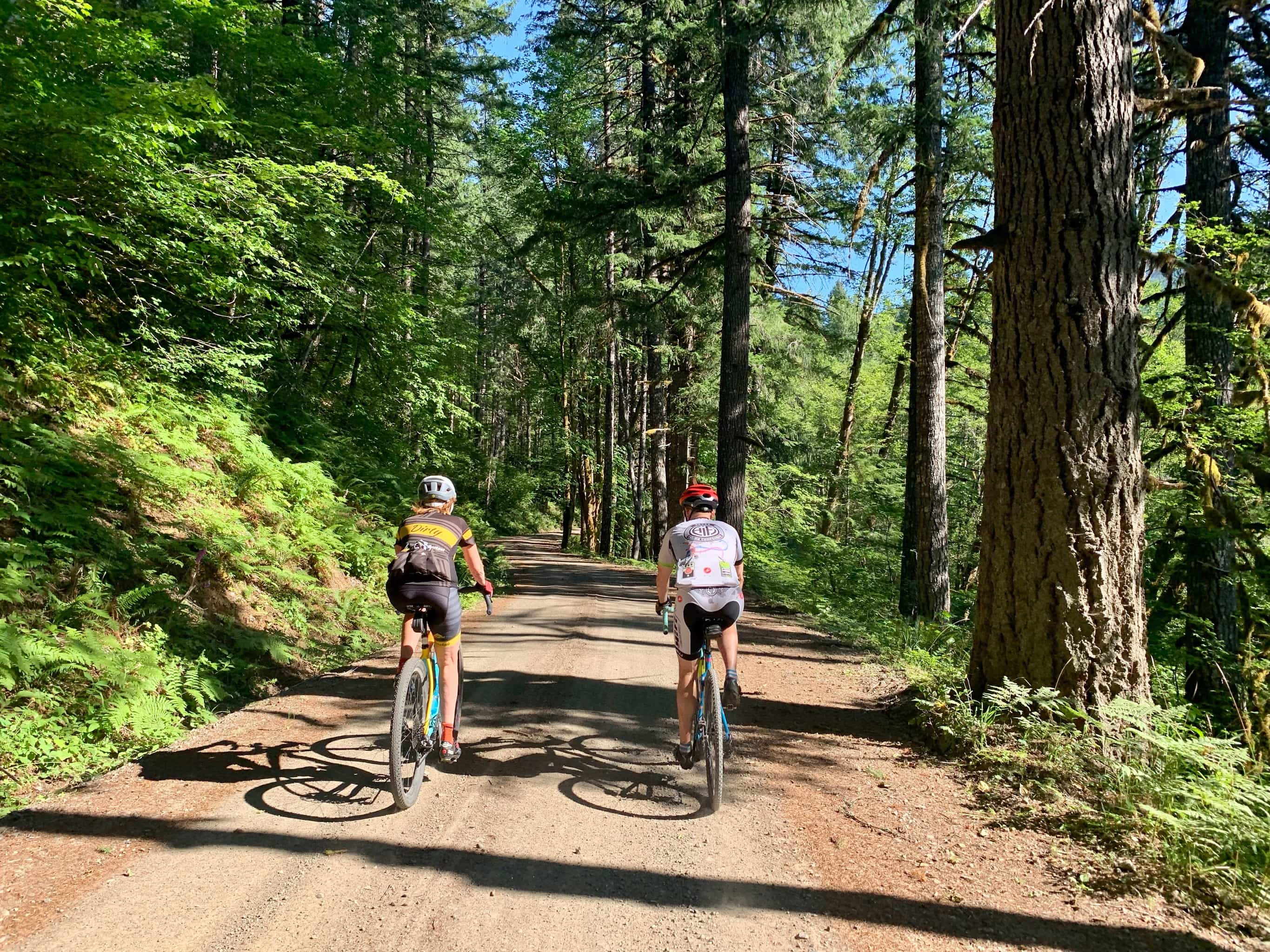 Cyclists on gravel road near Wind River in Gifford Pinchot National forest.