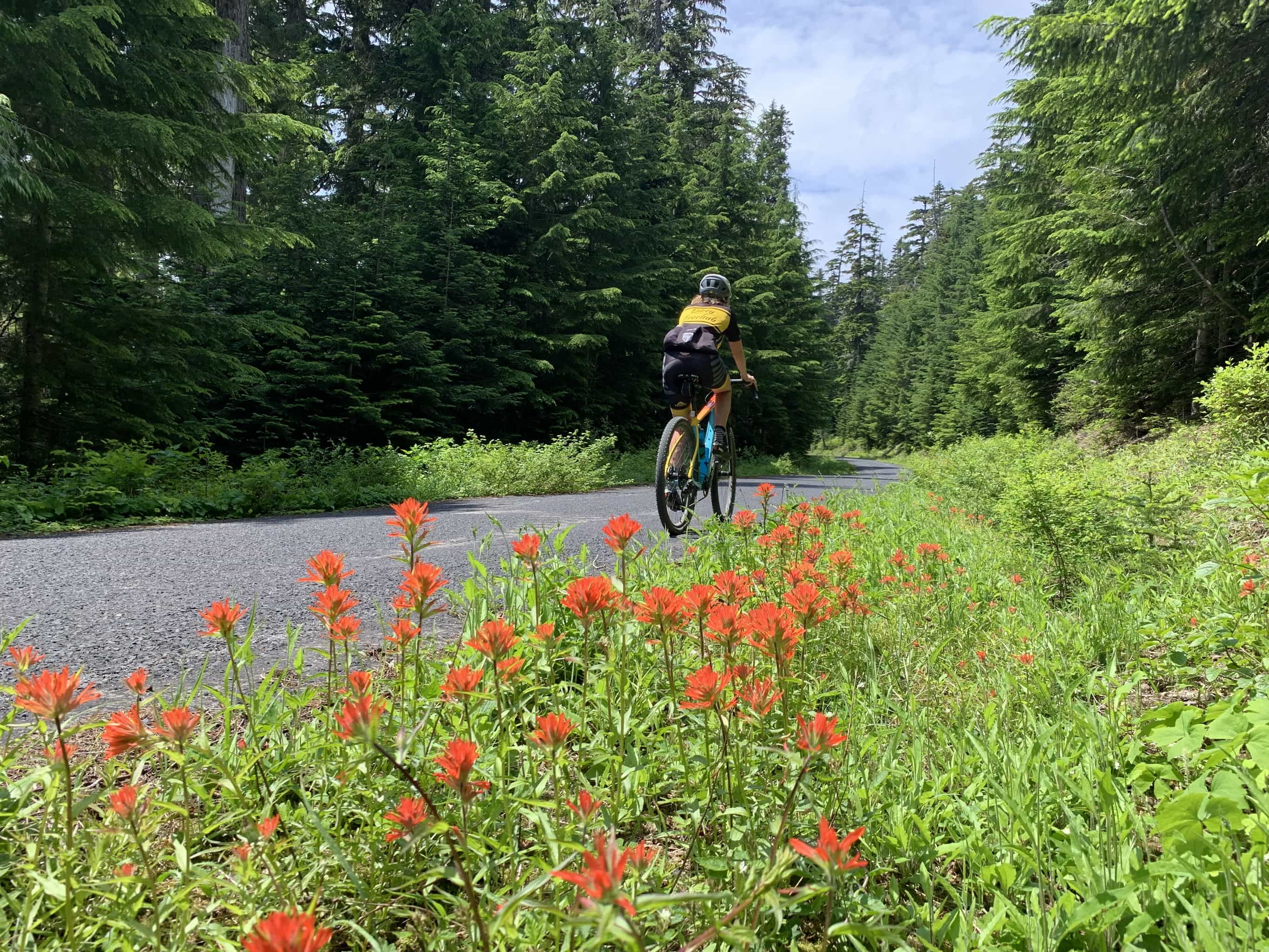 Cyclist descending paved portion of NF-54 near Carson, WA.