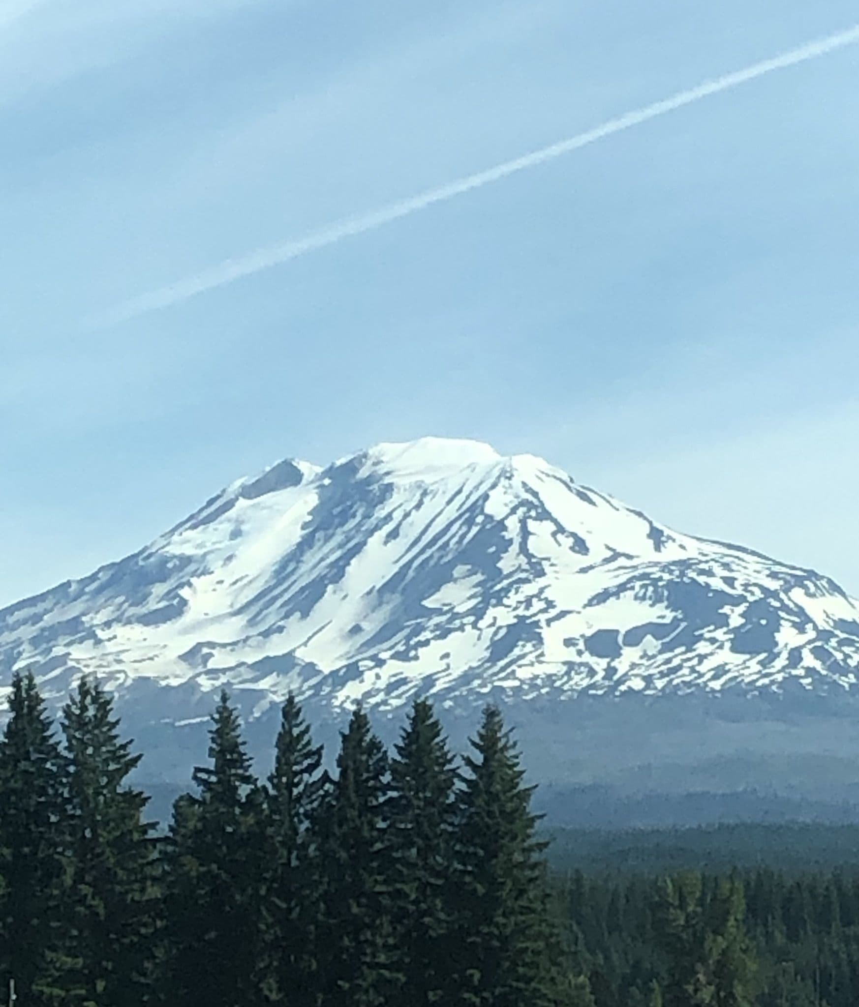 Mt. Adams from near Trout Lake and NF-23.