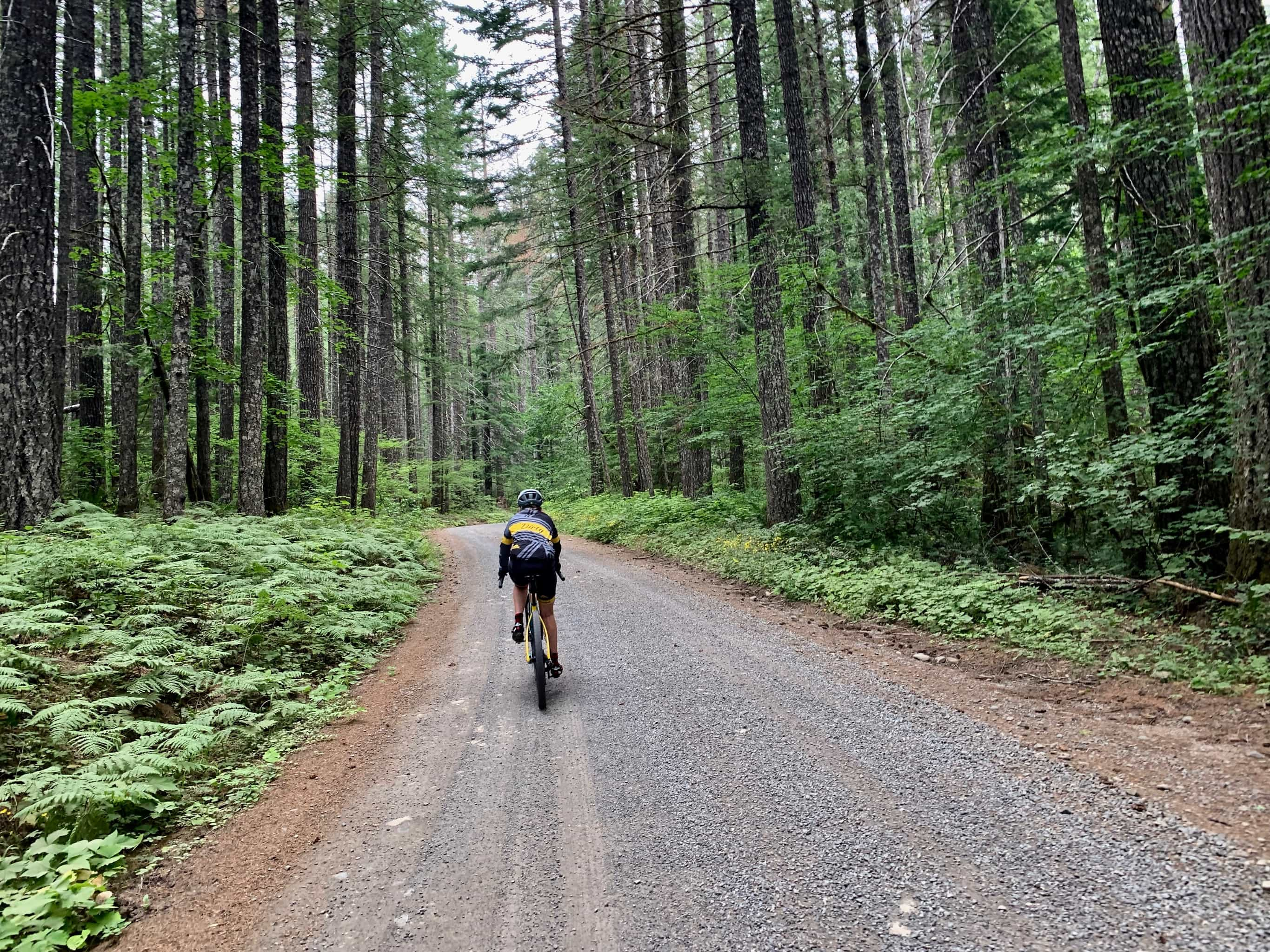 Cyclist on gravel road near Panther Creek in Gifford Pinchot national forest in the Columbia River Gorge area.