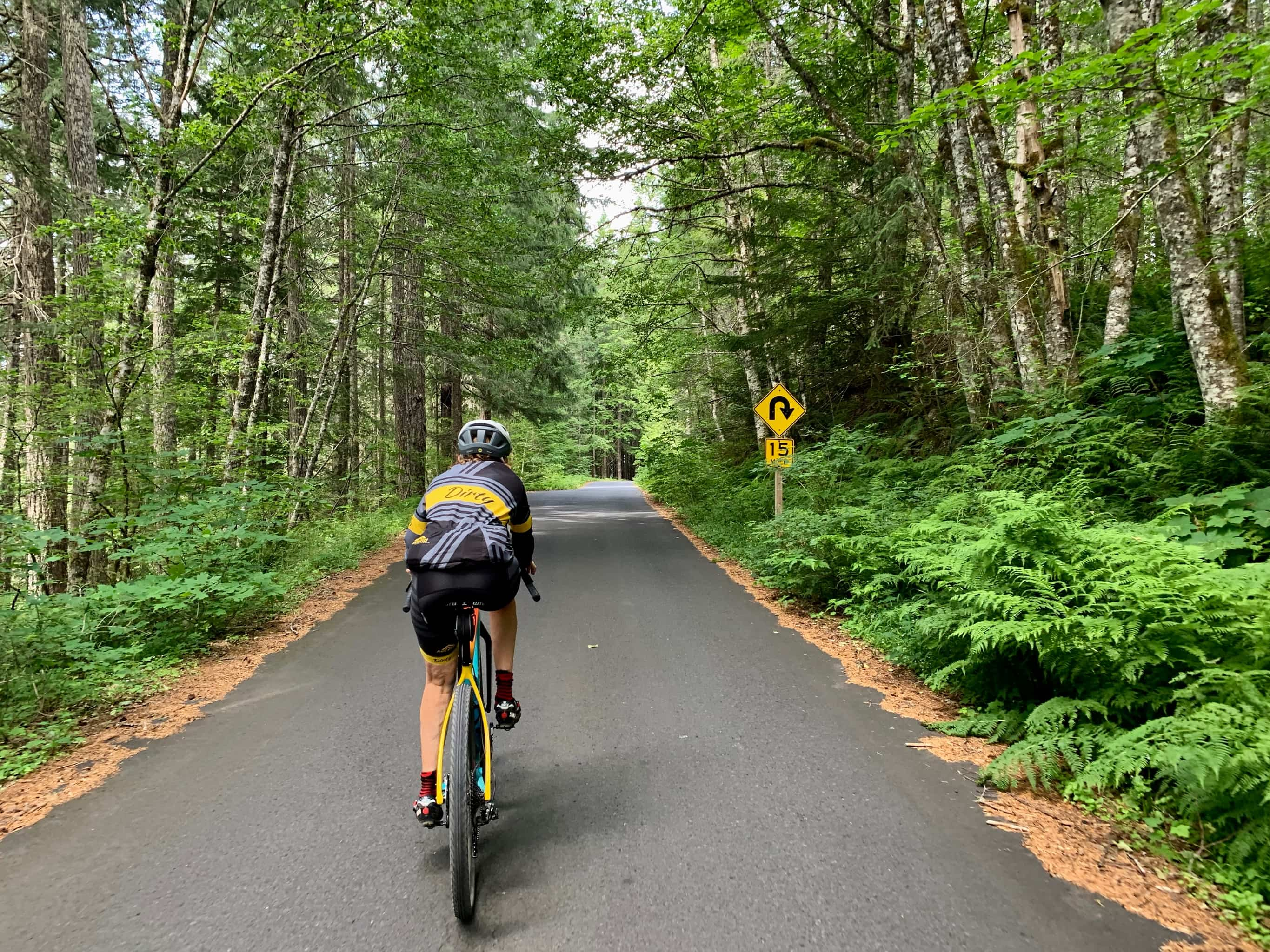 Cycling through dense tree canopy on NF-65 in Gifford Pinchot National forest near Stabler, Washington.