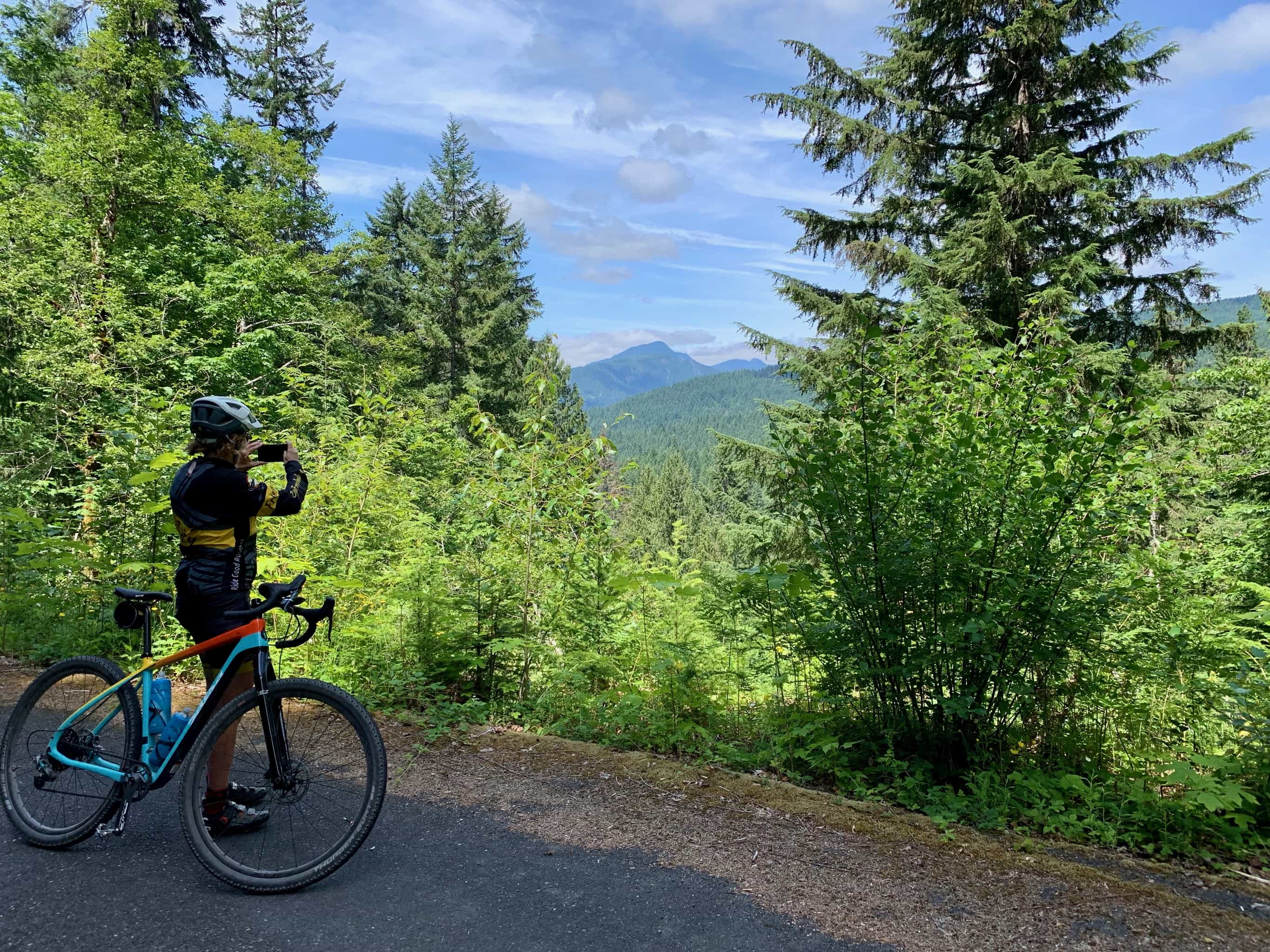 Views of the mountains in the Gifford Pinchot National Forest from Carson Guler road / NF-65.