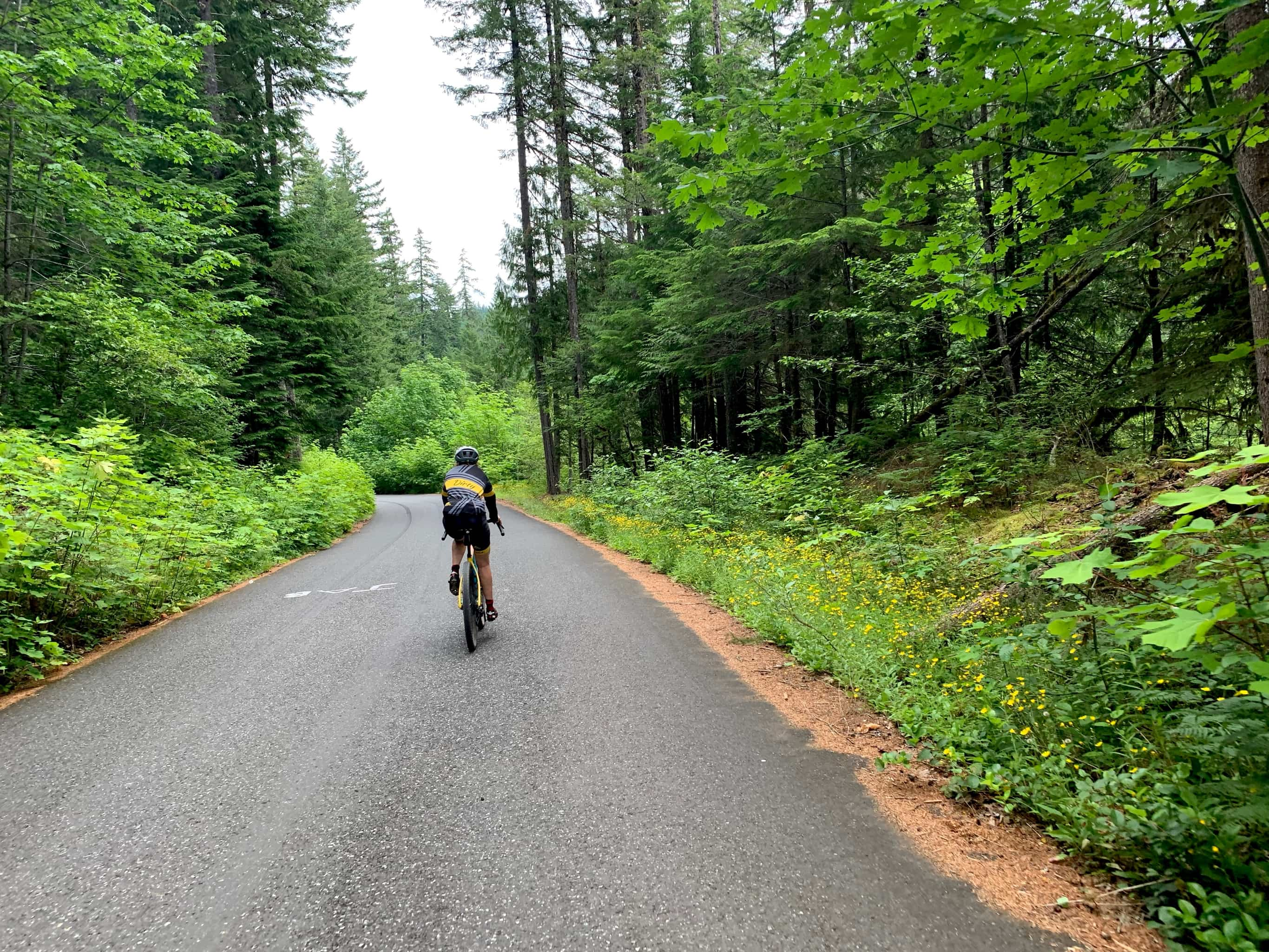 Bike rider on NF-60 / Panther Creek road in Gifford Pinchot National forest.