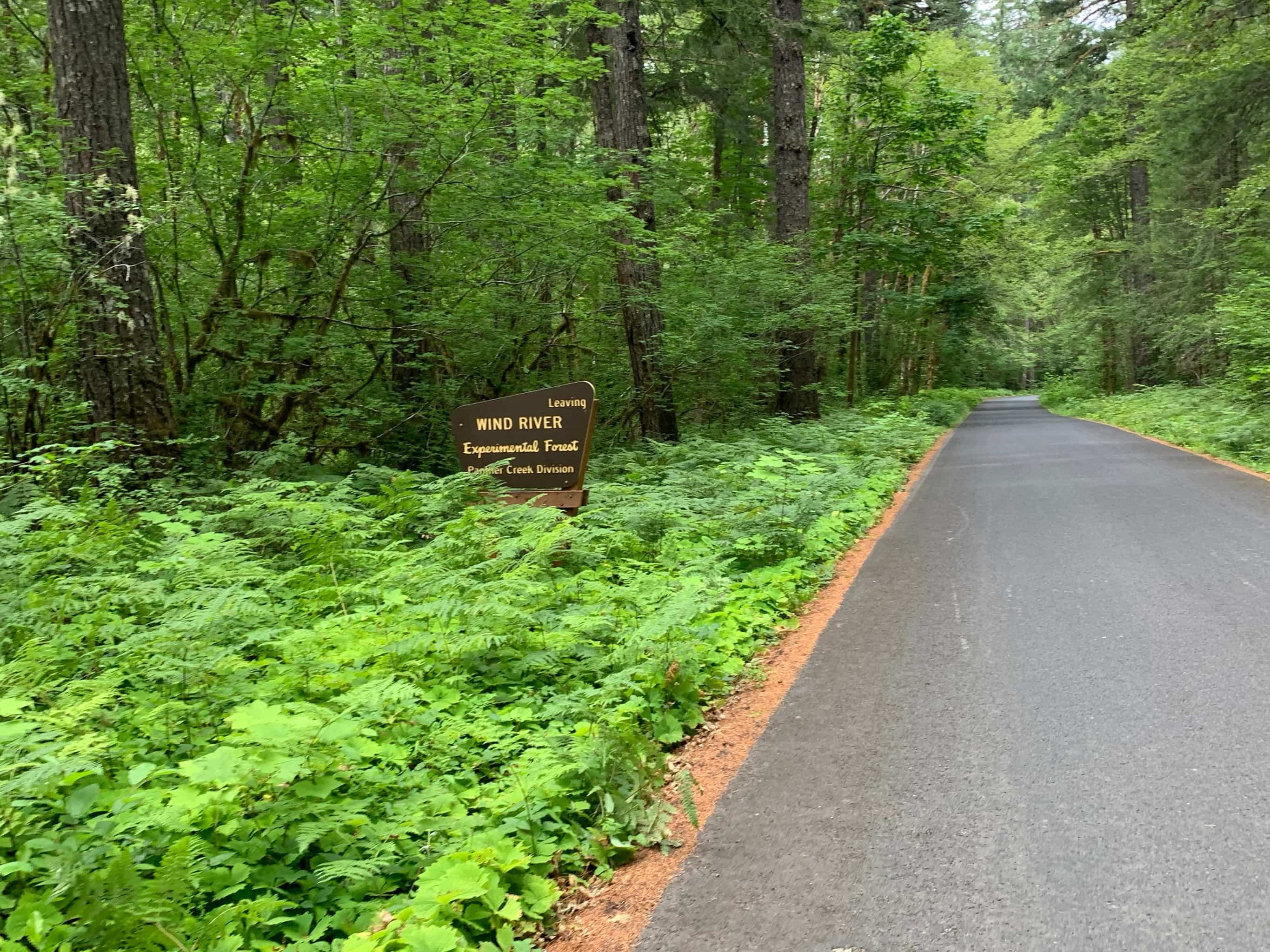 Experimental Forest sign in Gifford Pinchot national forest.