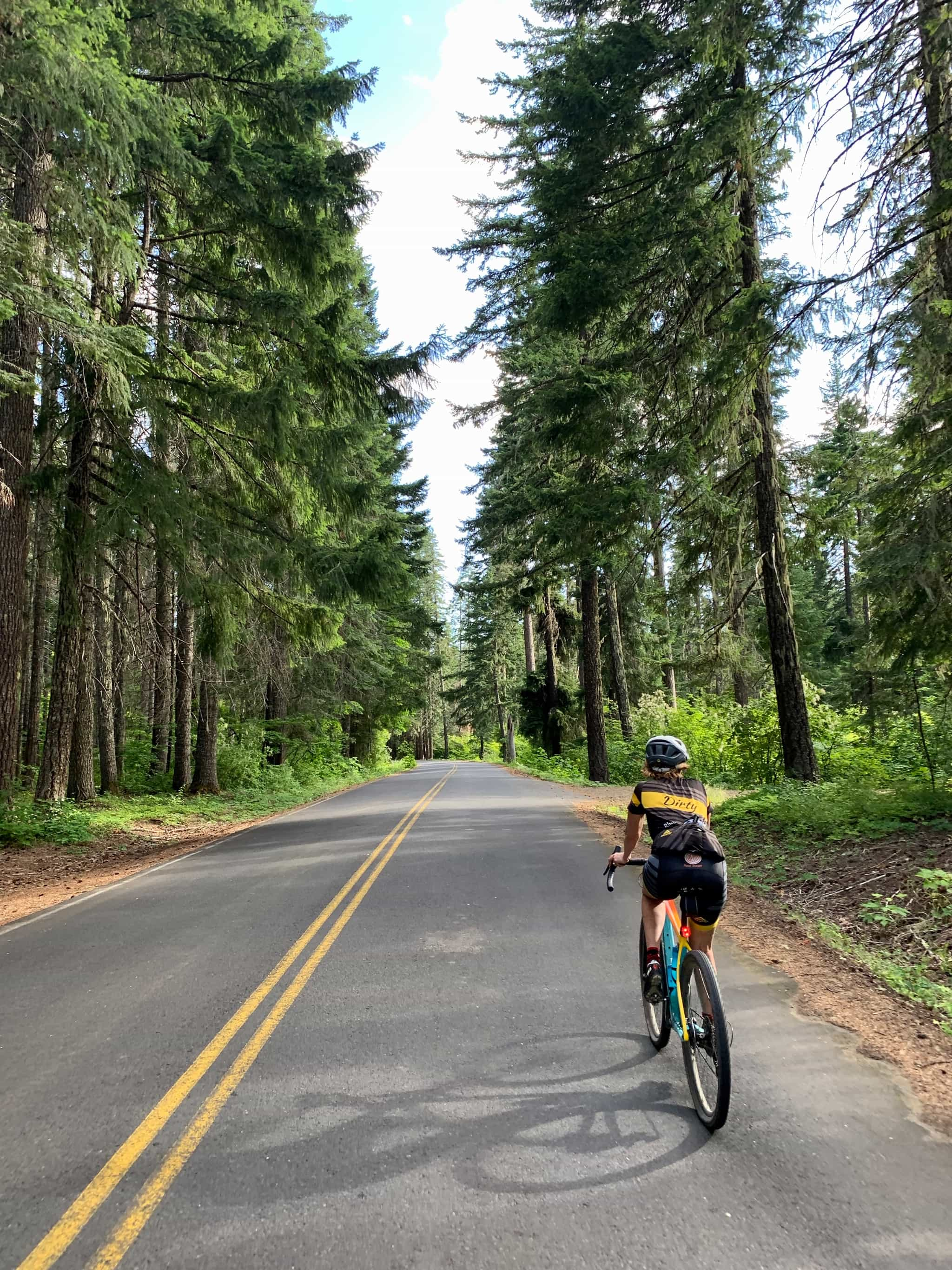 Cyclist on paved road NF-22 in Gifford Pinchot National Forest.