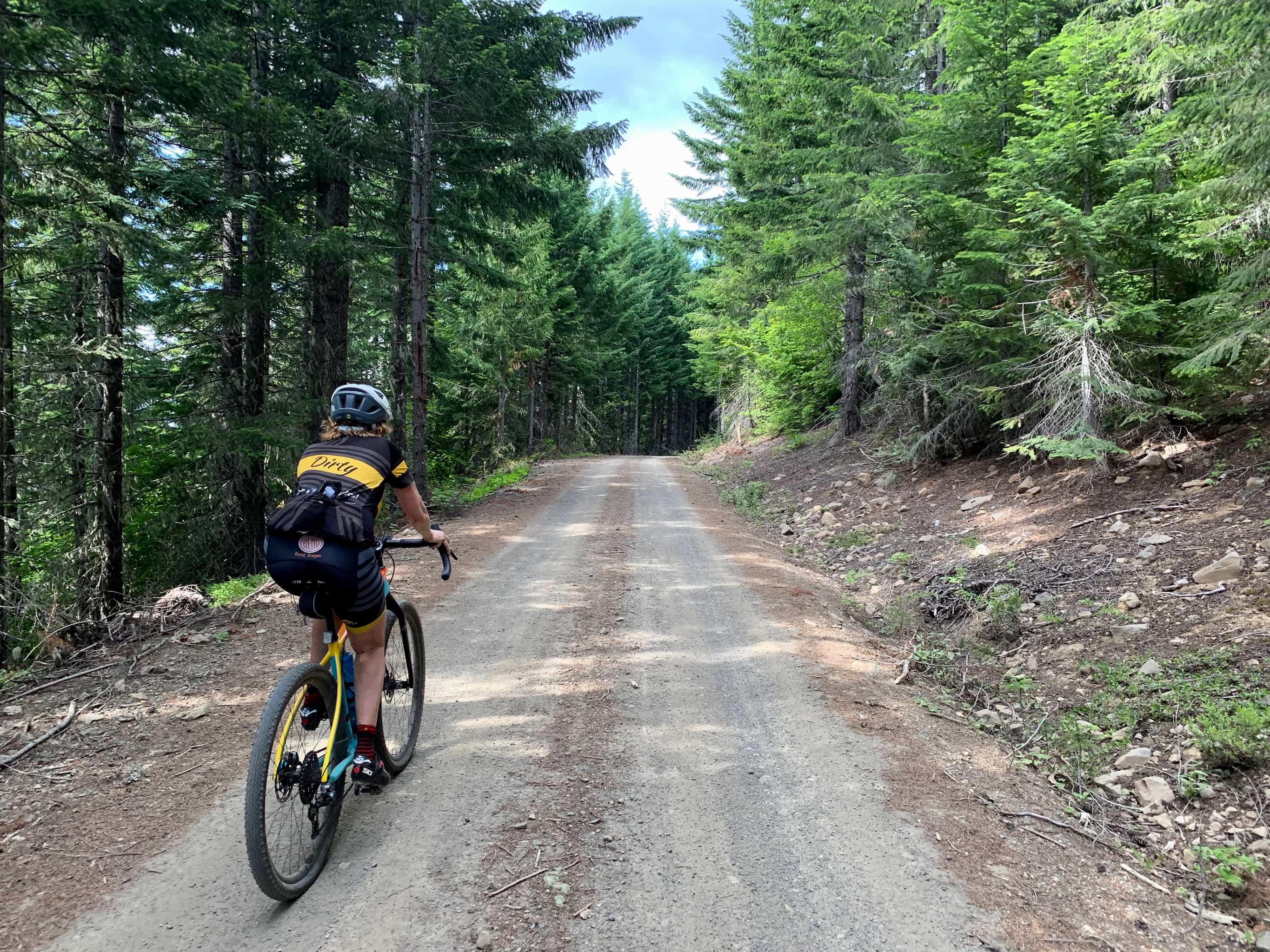 Gravel cyclist on NF-8810 in the Gifford Pinchot National Forest.