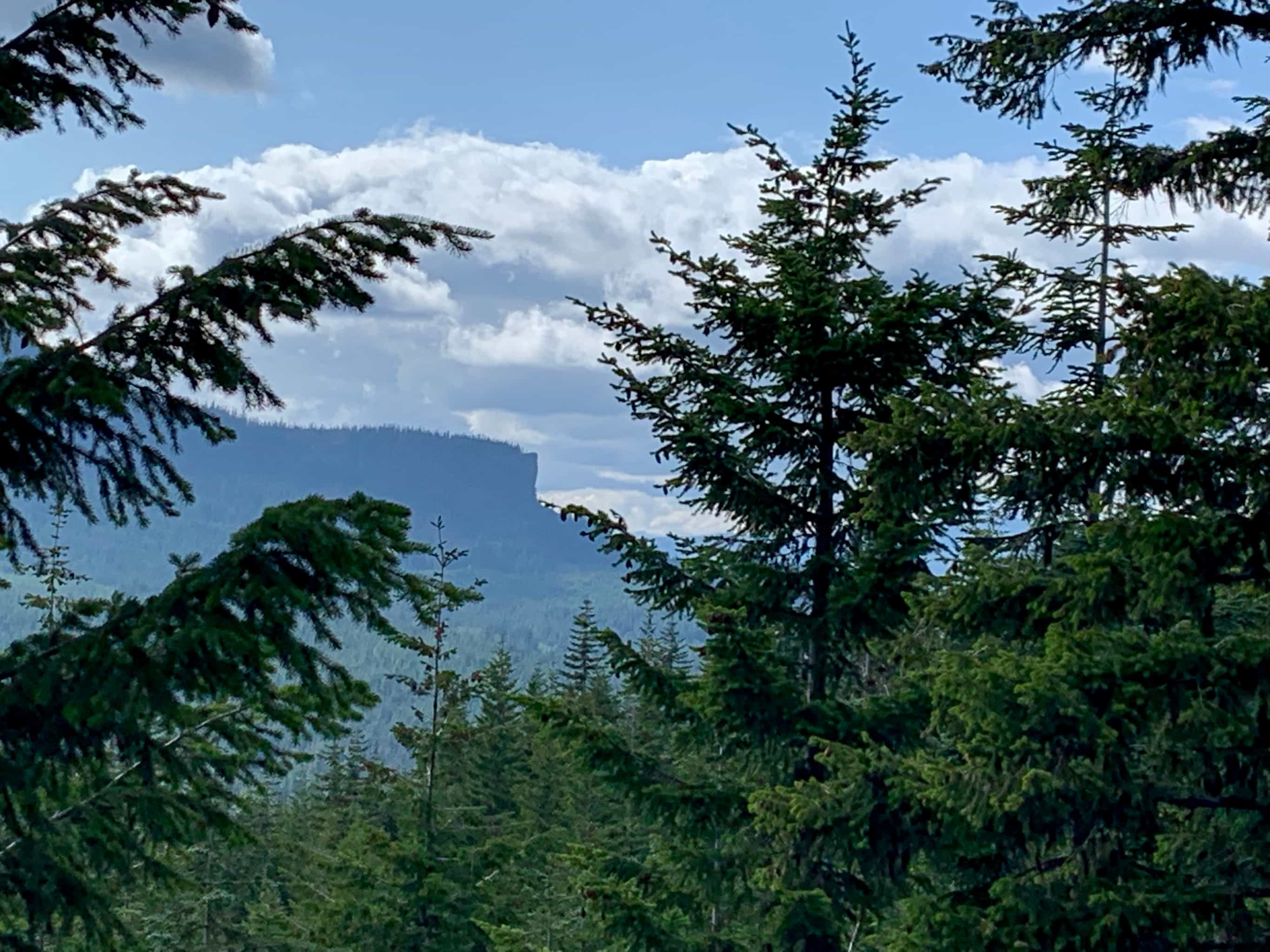 Distant view of Steamboat Mountain from gravel road near Trout Lake, Washington in Gifford Pinchot National Forest.