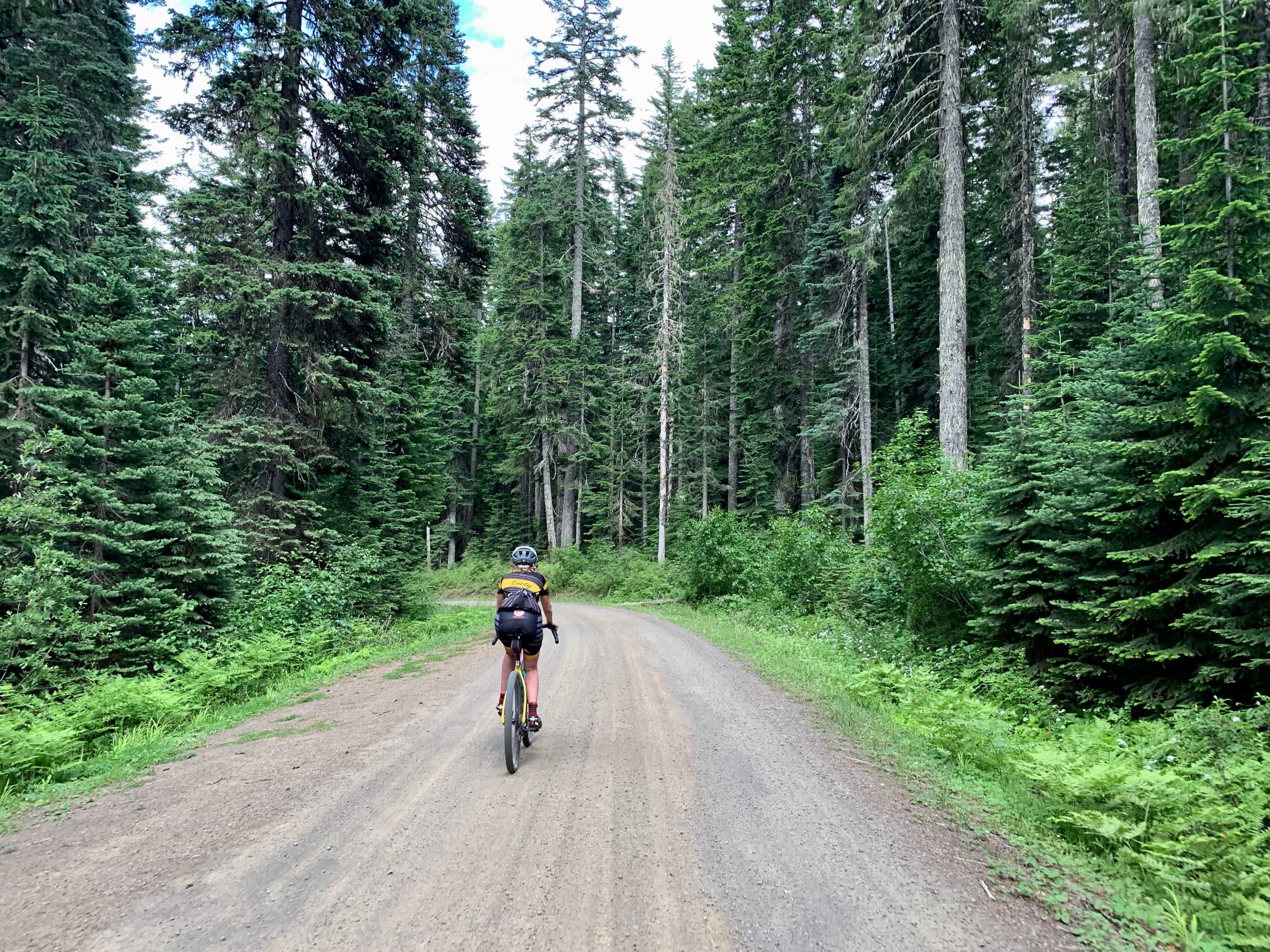 Cyclist on gravel road NF-8810 nearing intersection with NF-23 in Gifford Pinchot National Forest near Trout Lake, Washington.