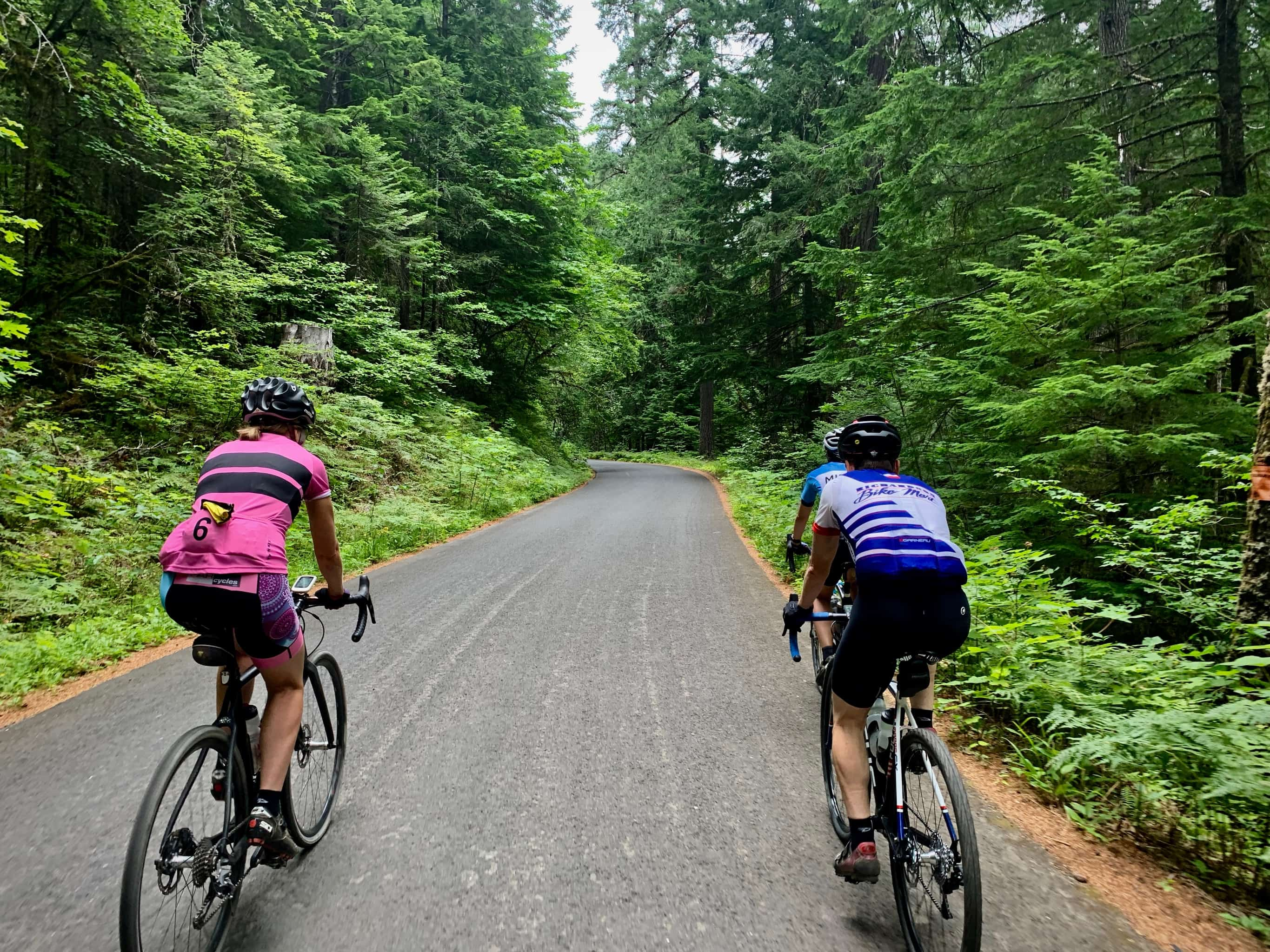 Two cyclists on paved forest service roads near Panther Creek campground in Washington state.
