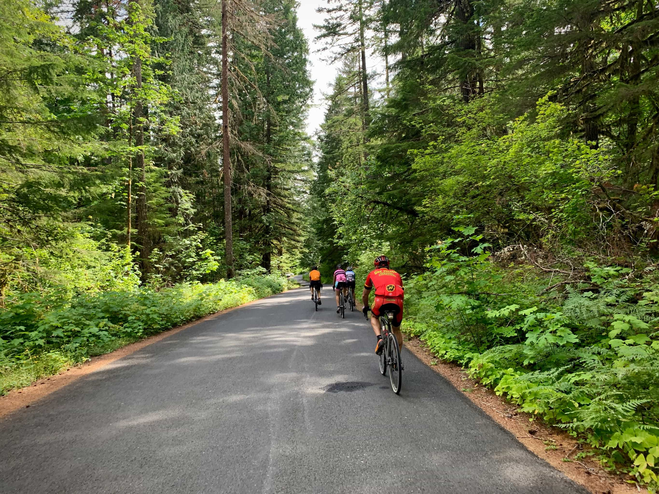 Cyclist on NF-65 near Panther Creek campground near Stabler, Washington.