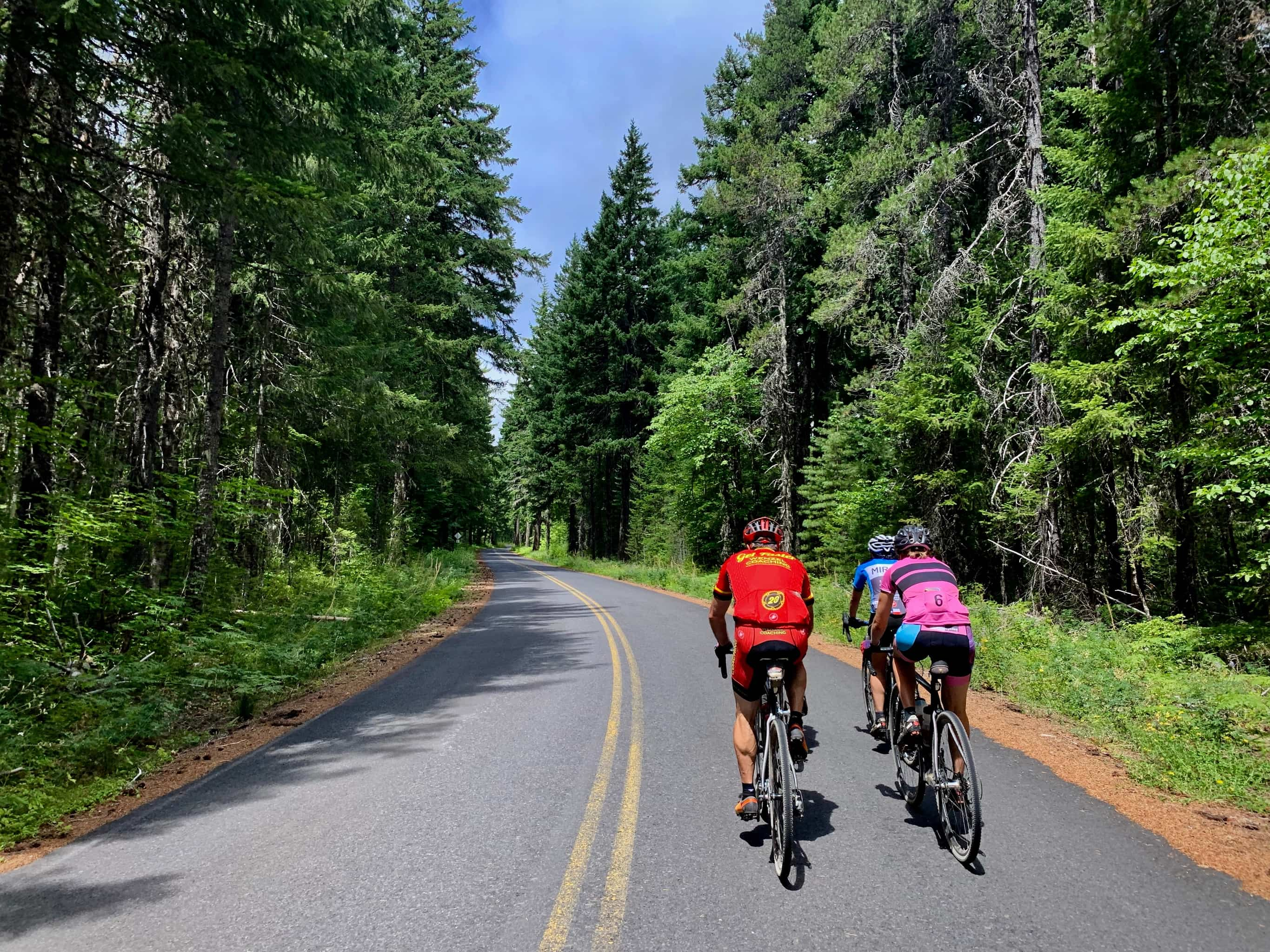 Cyclists on paved road NF-66 near the Big Lava Bed in the Gifford Pinchot National Forest.
