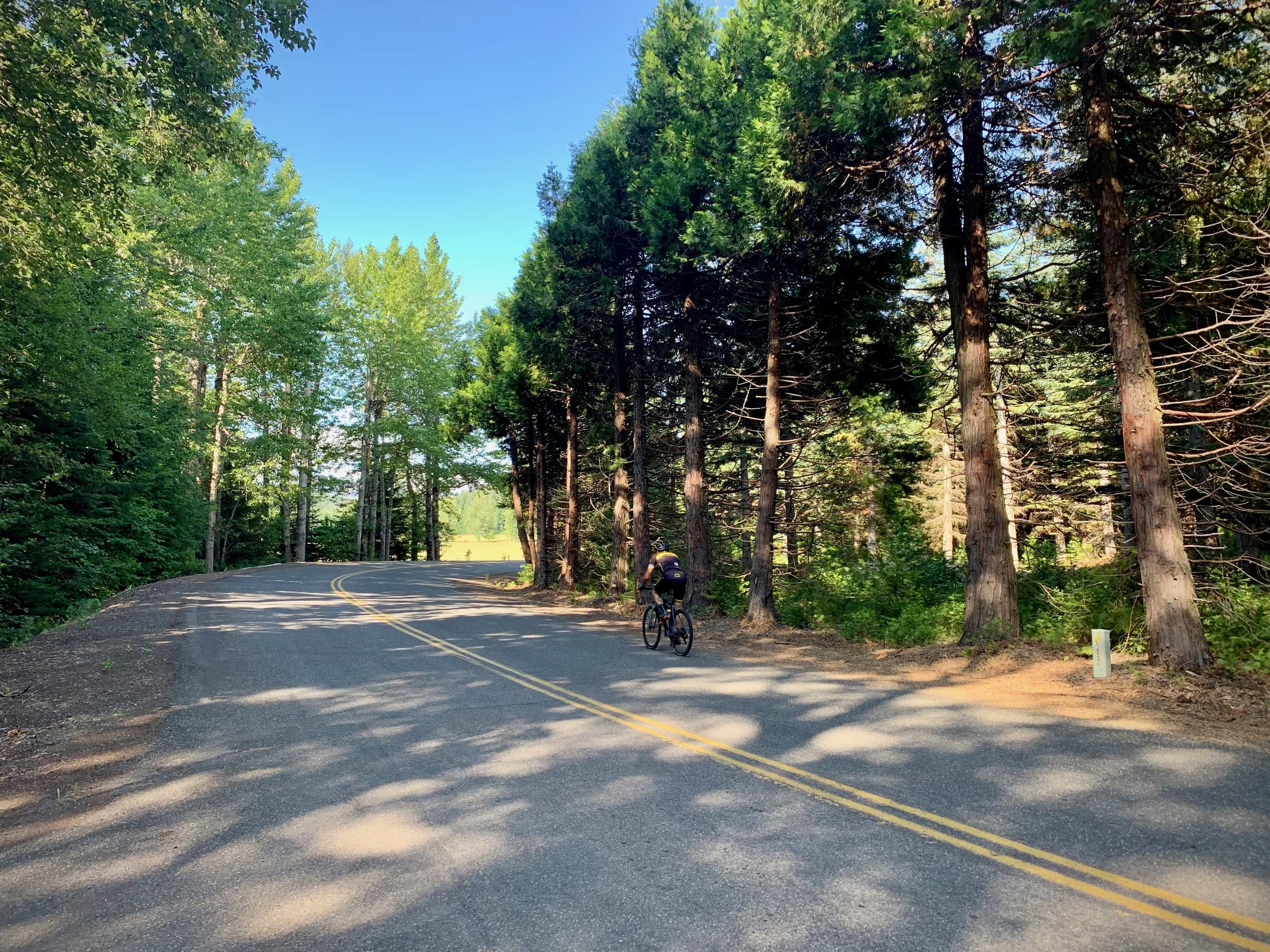 Cyclist on Laurance Lake road near Parkdale, Oregon.
