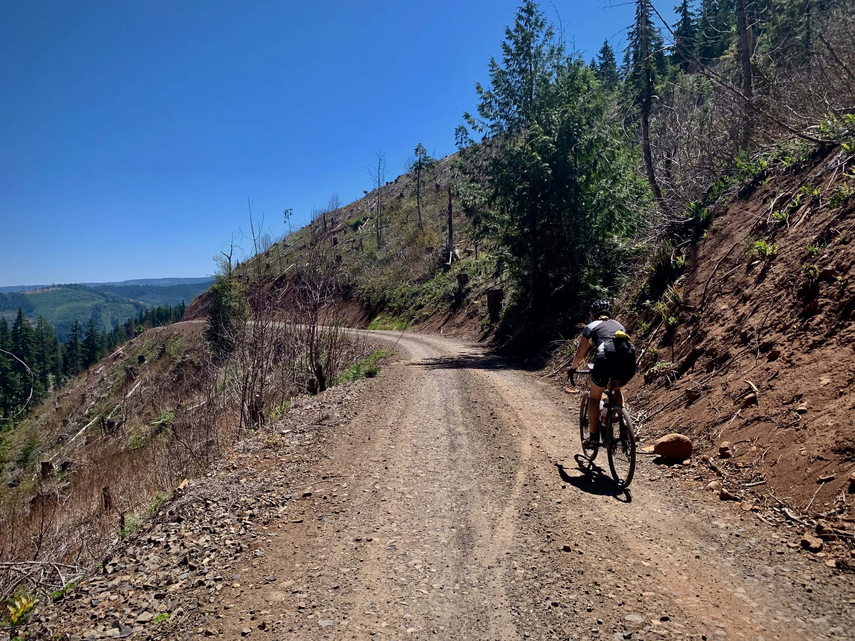 Cyclist on gravel road, Kingsley, with open views to the east of Hood River valley.