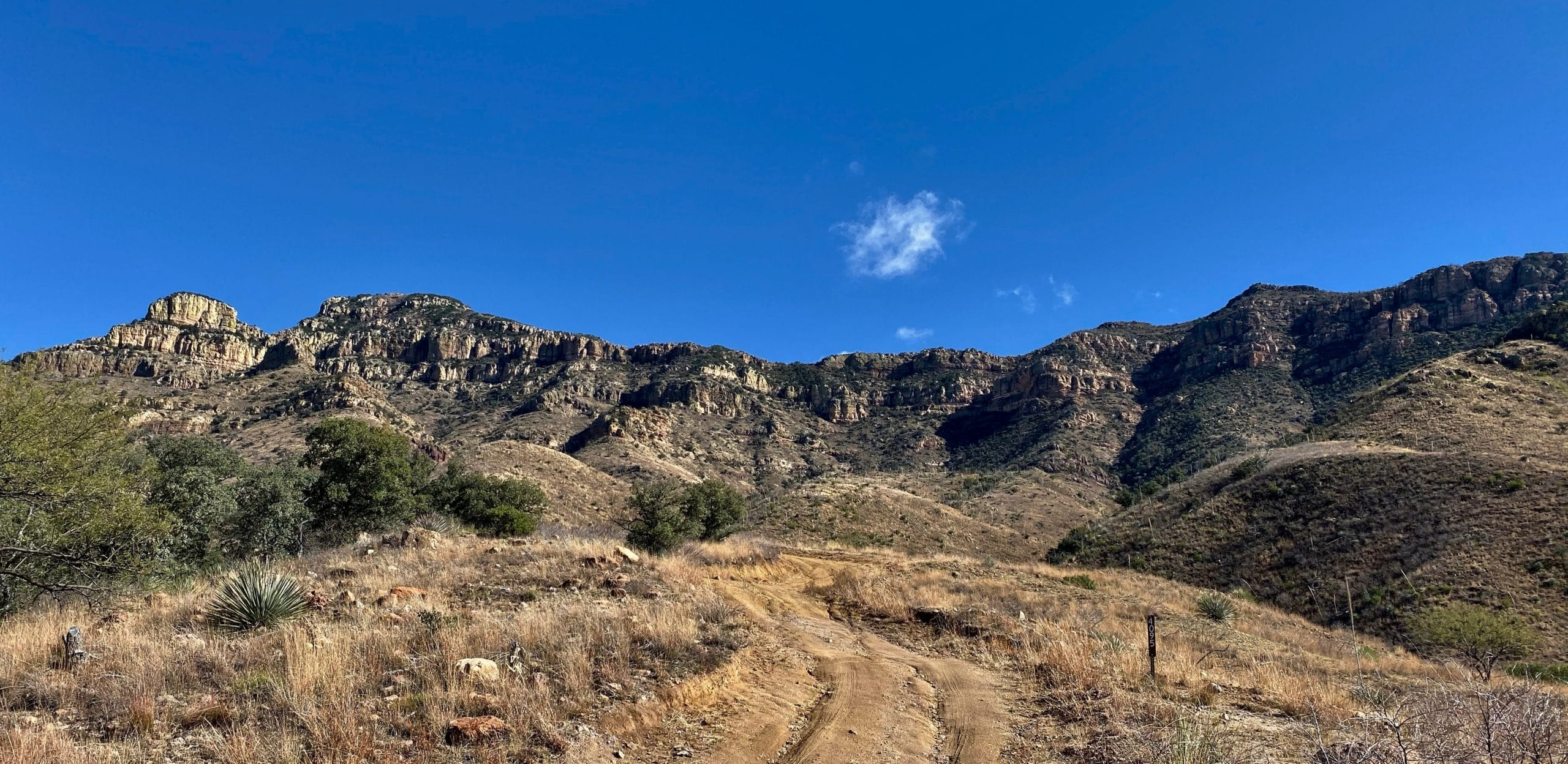 View of the Atascosa Mountains from Ruby Road near Nogales, Arizona.