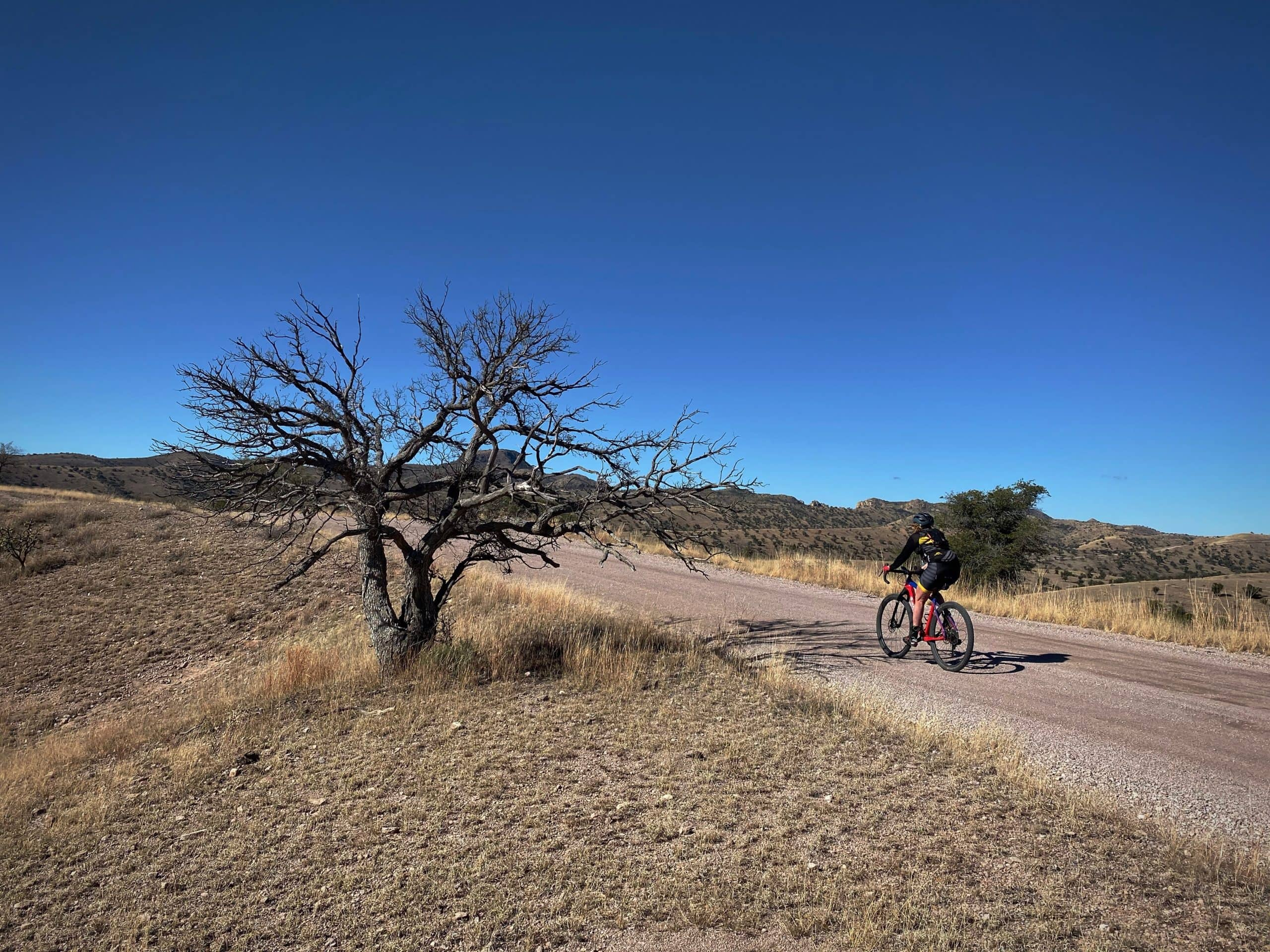 Gravel cyclist on Ruby road riding through the grasslands and thorn-scrub near the Pajarito and Atascosa Mountains.