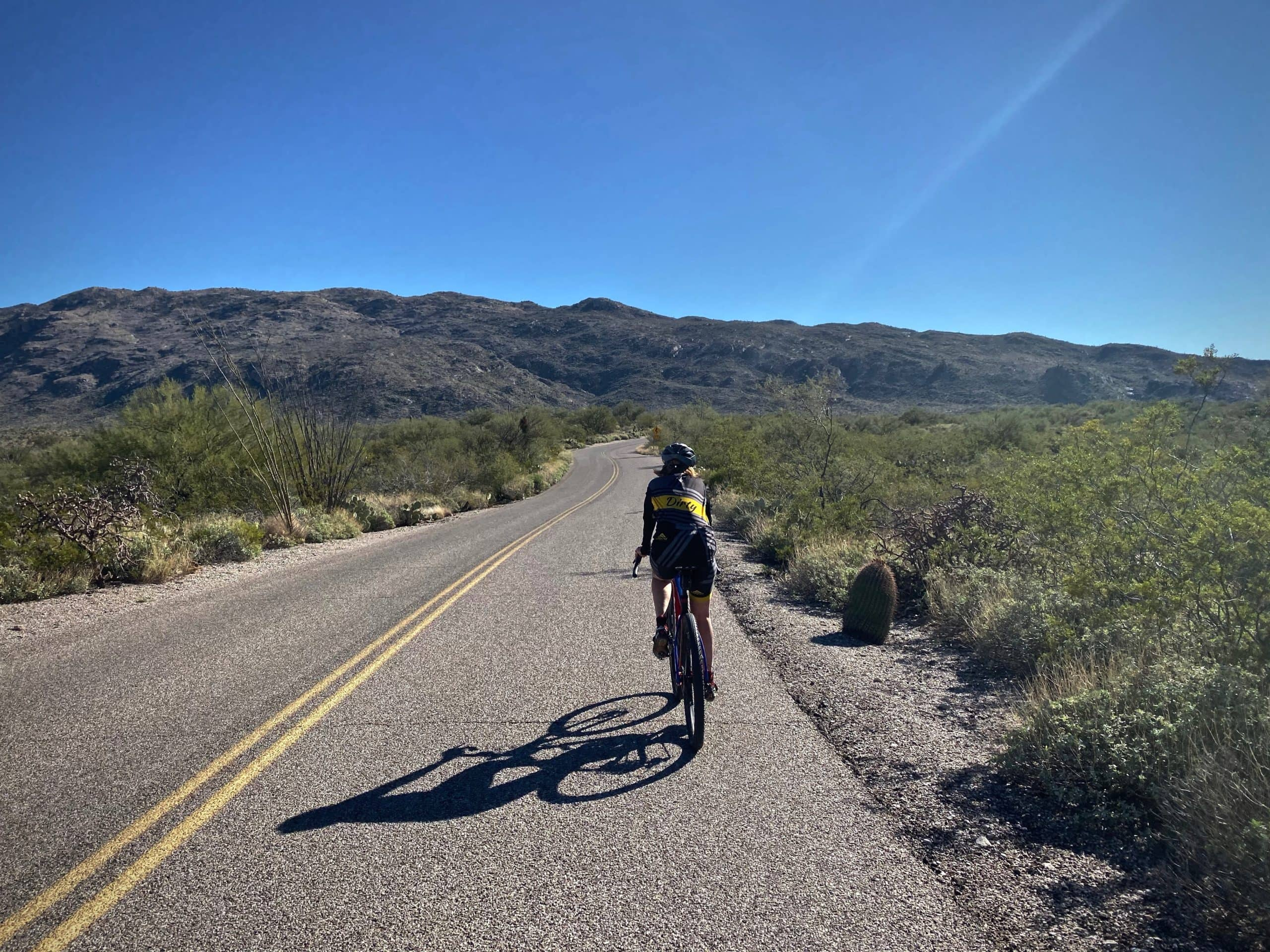 Cyclist on Cactus Forest road in Saguaro National Park in Tucson, Arizona.