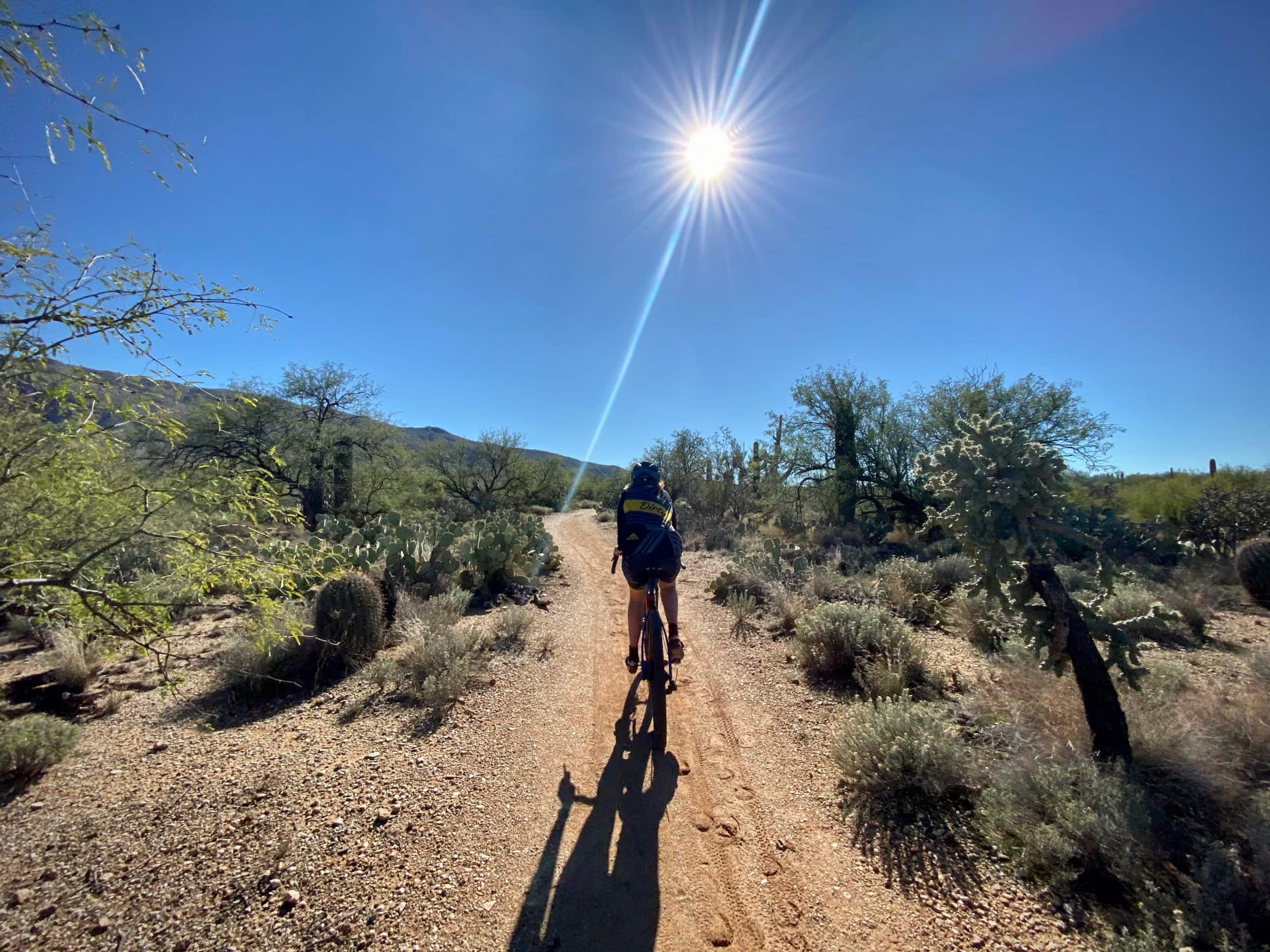 Gravel girl riding the Cactus Forest trail in Saguaro National park (East) in Tucson, Arizona.