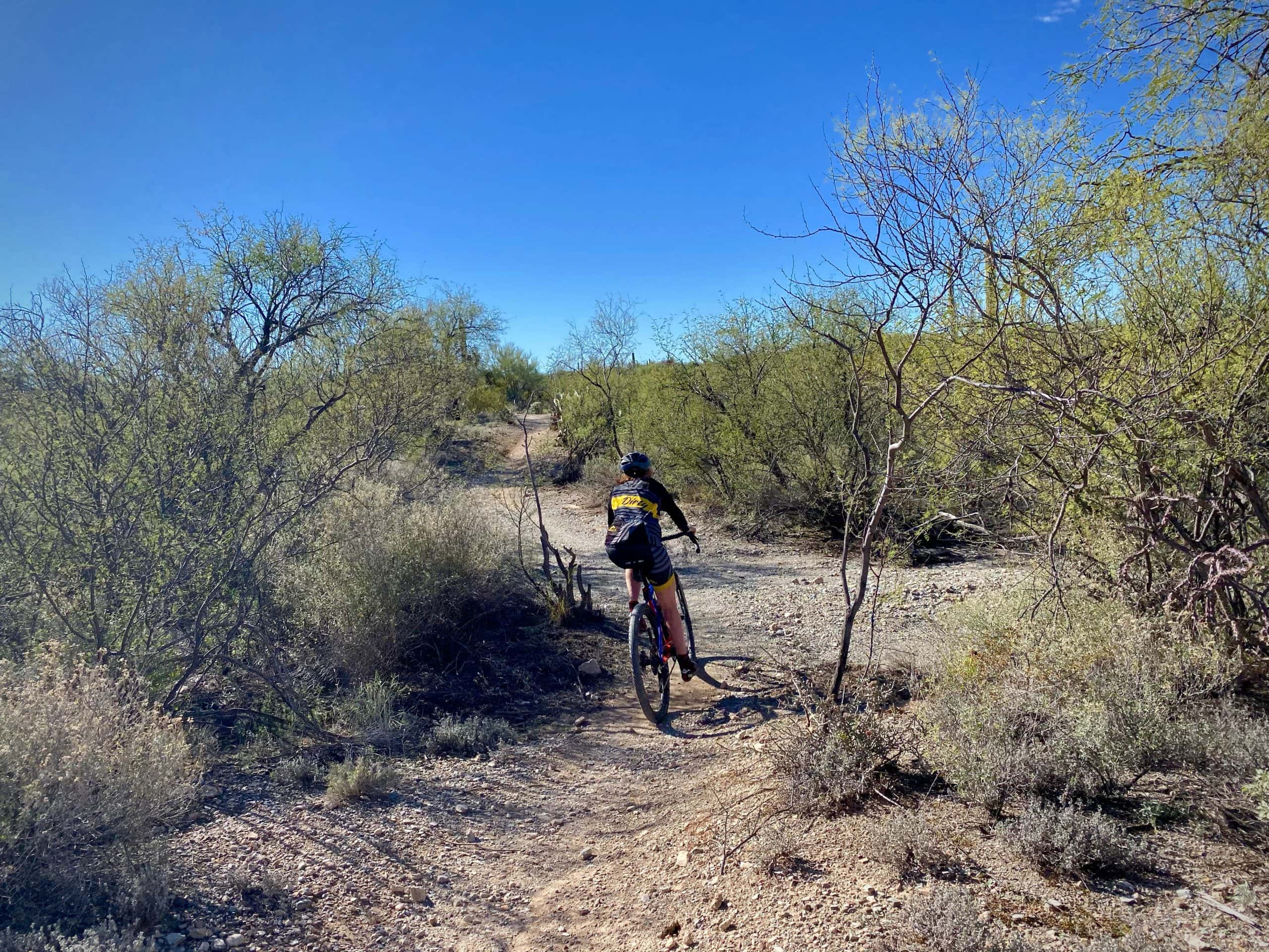 Cyclist riding through wash on gravel bike in Saguaro National Park (East).