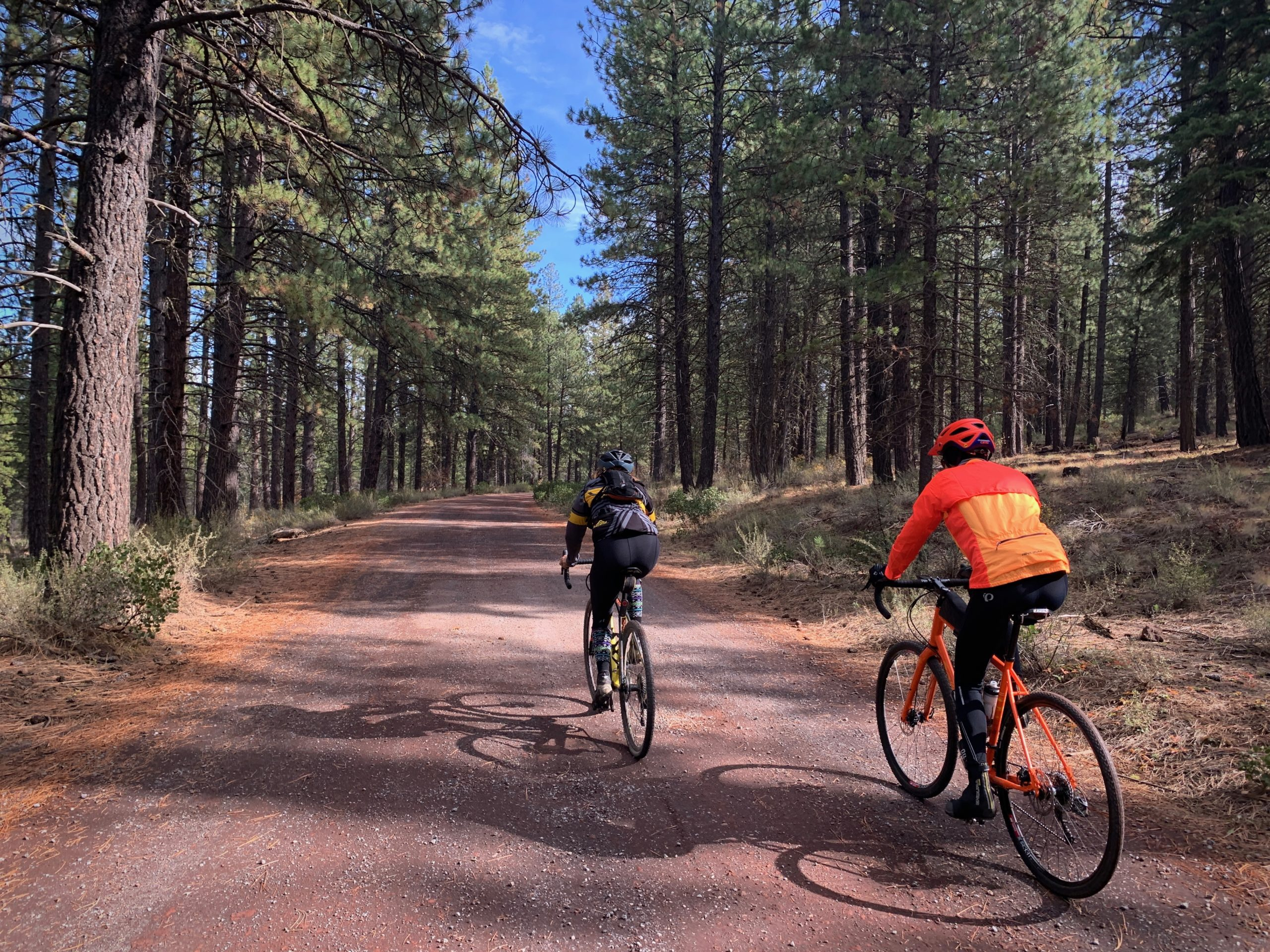 Two cyclists on the gravel road leading to Benham Falls in Deschutes National Forest.