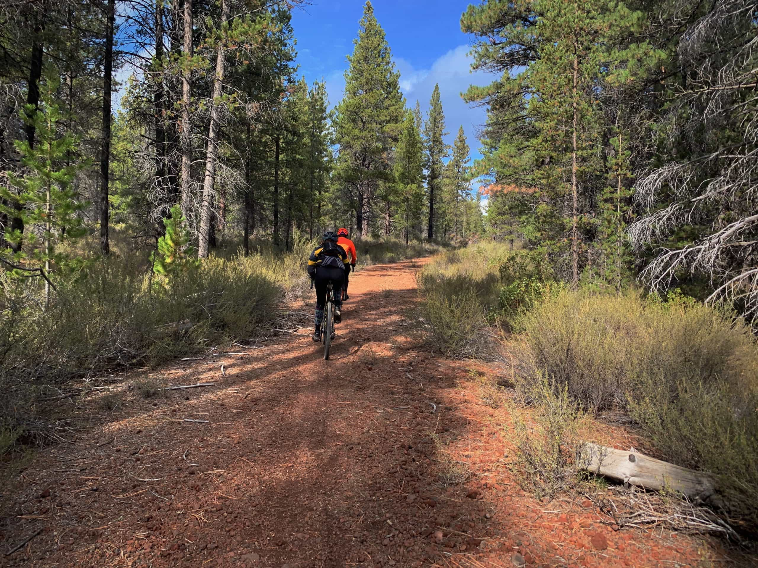 Two gravel cyclists on the double track dirt path above the Deschutes River near the slew in the Deschutes National Forest.
